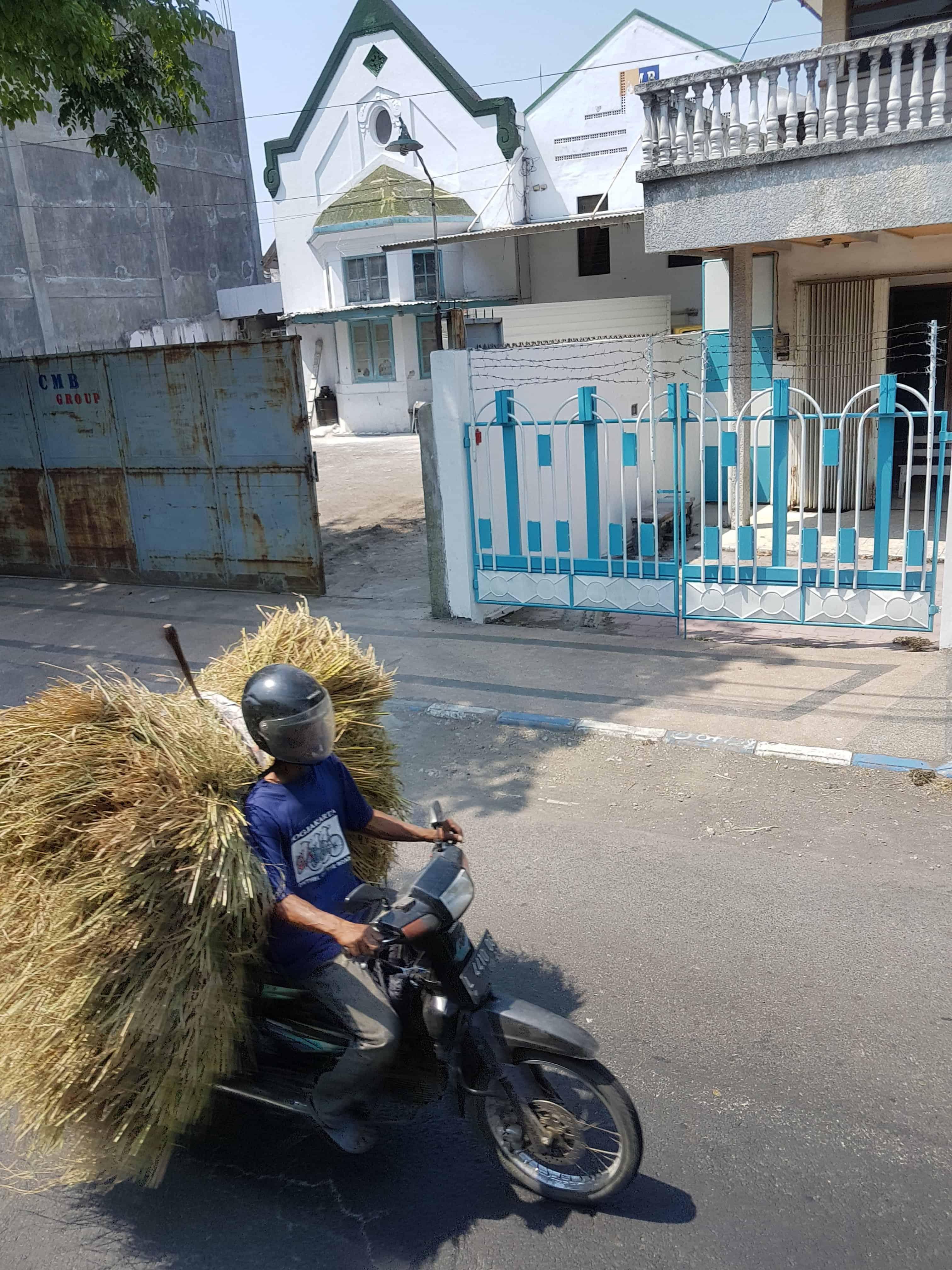 Indonésien qui transporte à scooter de la paille, Indonésie