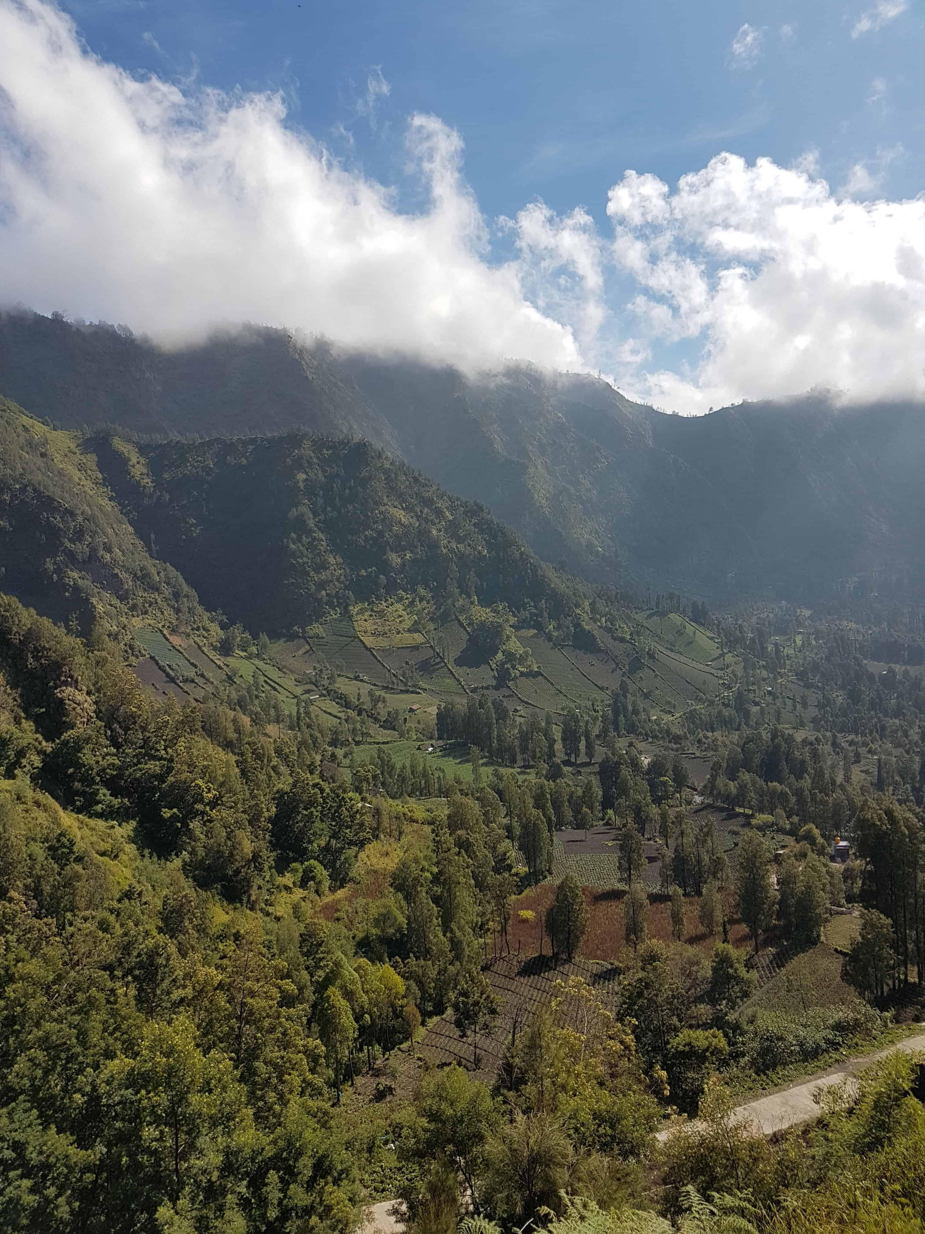 Paysage autour du Mont Bromo, Indonésie