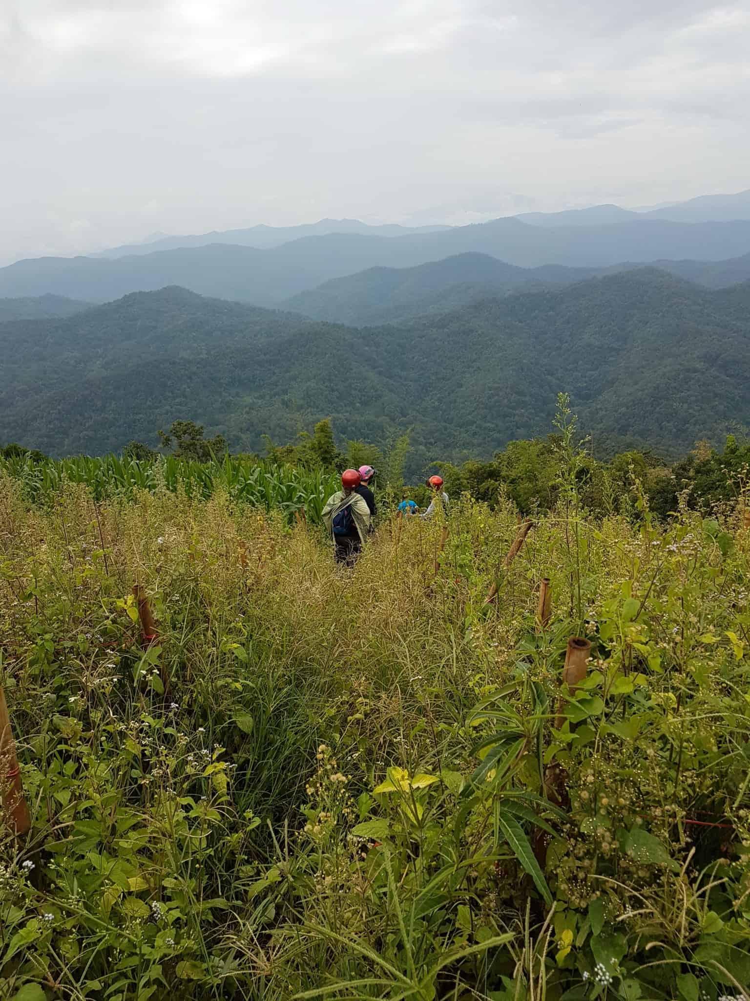 Thaïlande, tour en quad et rencontre imprévue avec les éléphants 🐘 4
