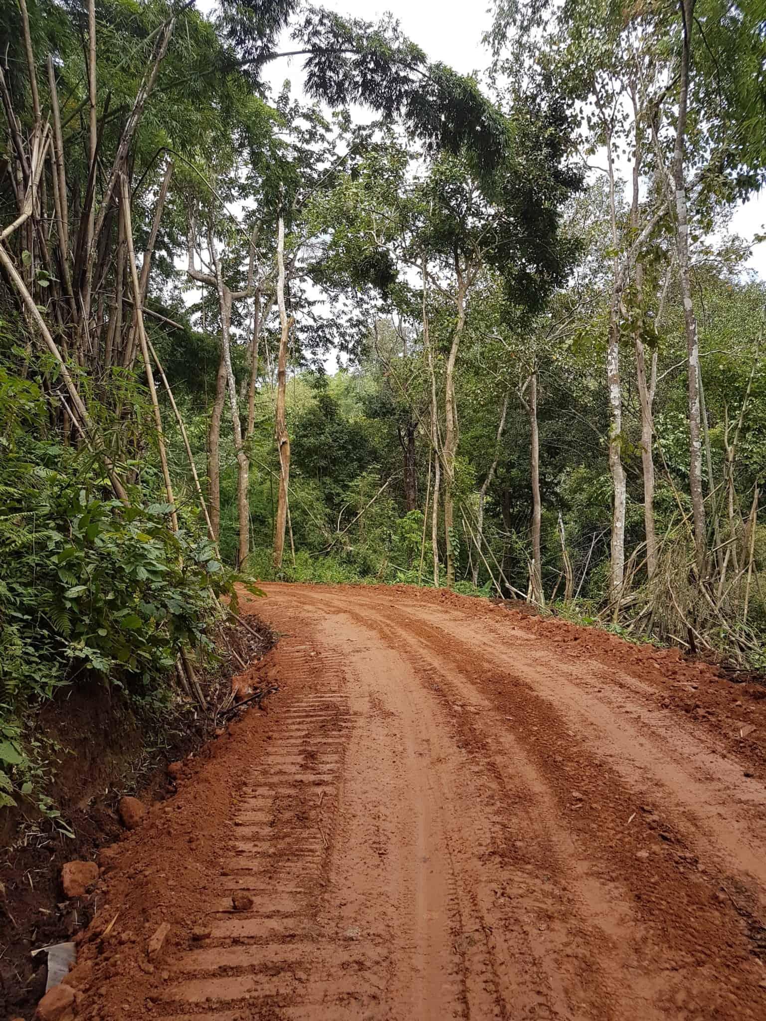 Thaïlande, tour en quad et rencontre imprévue avec les éléphants 🐘 3