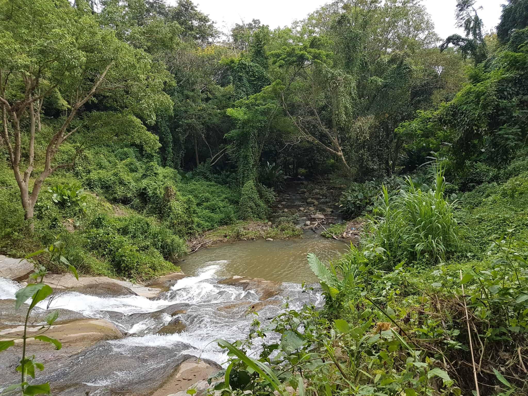 Thaïlande, tour en quad et rencontre imprévue avec les éléphants 🐘 5