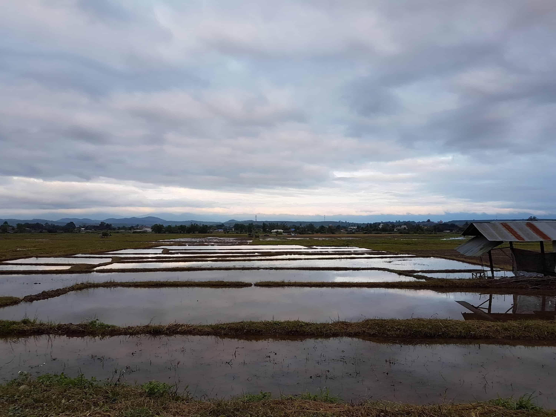 Thaïlande, journée repos à Wiang Pa Pao 🛏 6