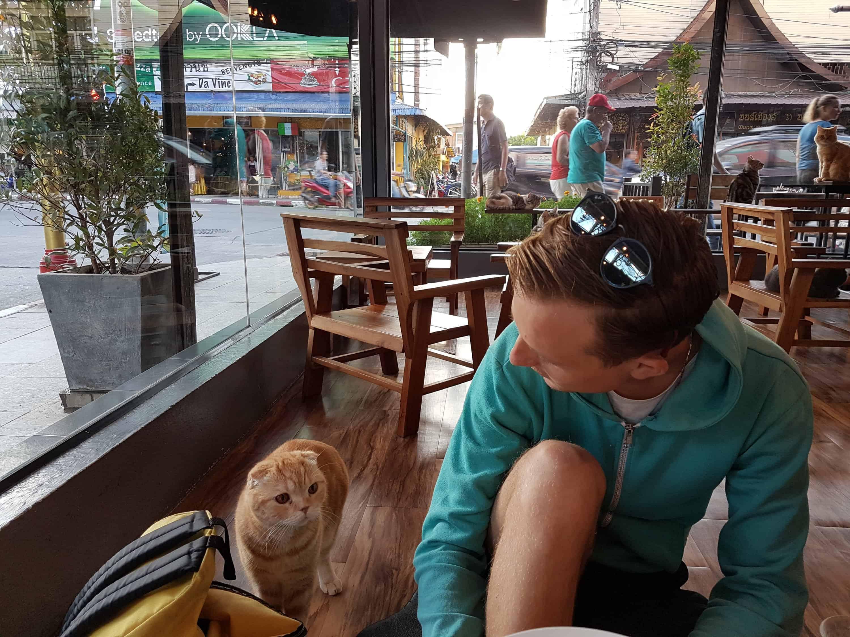 Thaïlande, balade dans la province de Chiang Rai 🍜 12