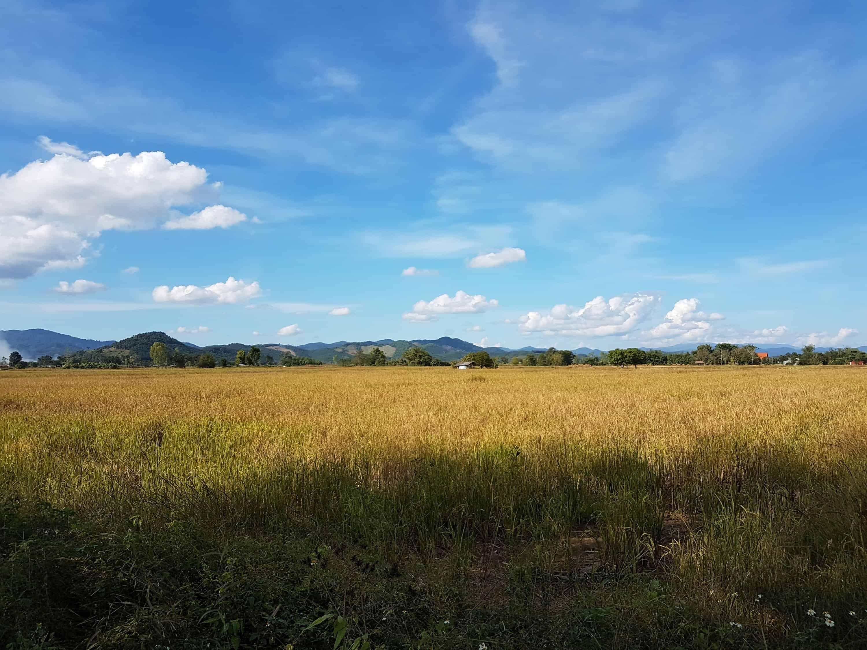 Thaïlande, la visite du Laos la plus rapide au monde 😅 2