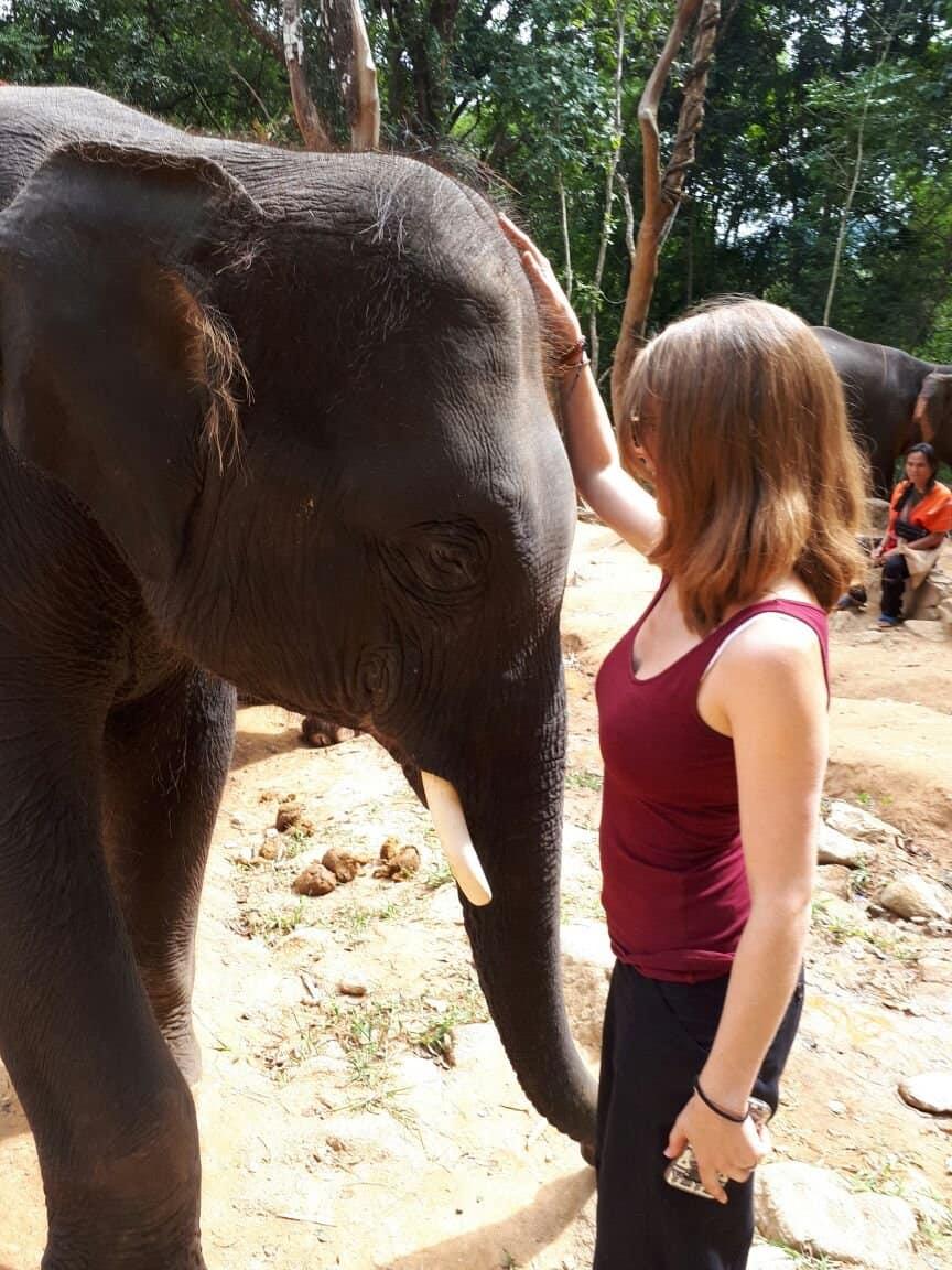 Thaïlande, tour en quad et rencontre imprévue avec les éléphants 🐘 14