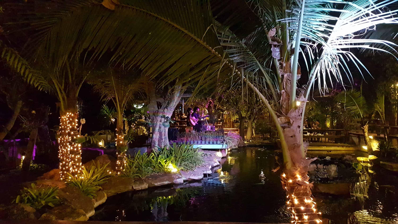 Thaïlande, magnifique rencontreavec Kate 🧡 5