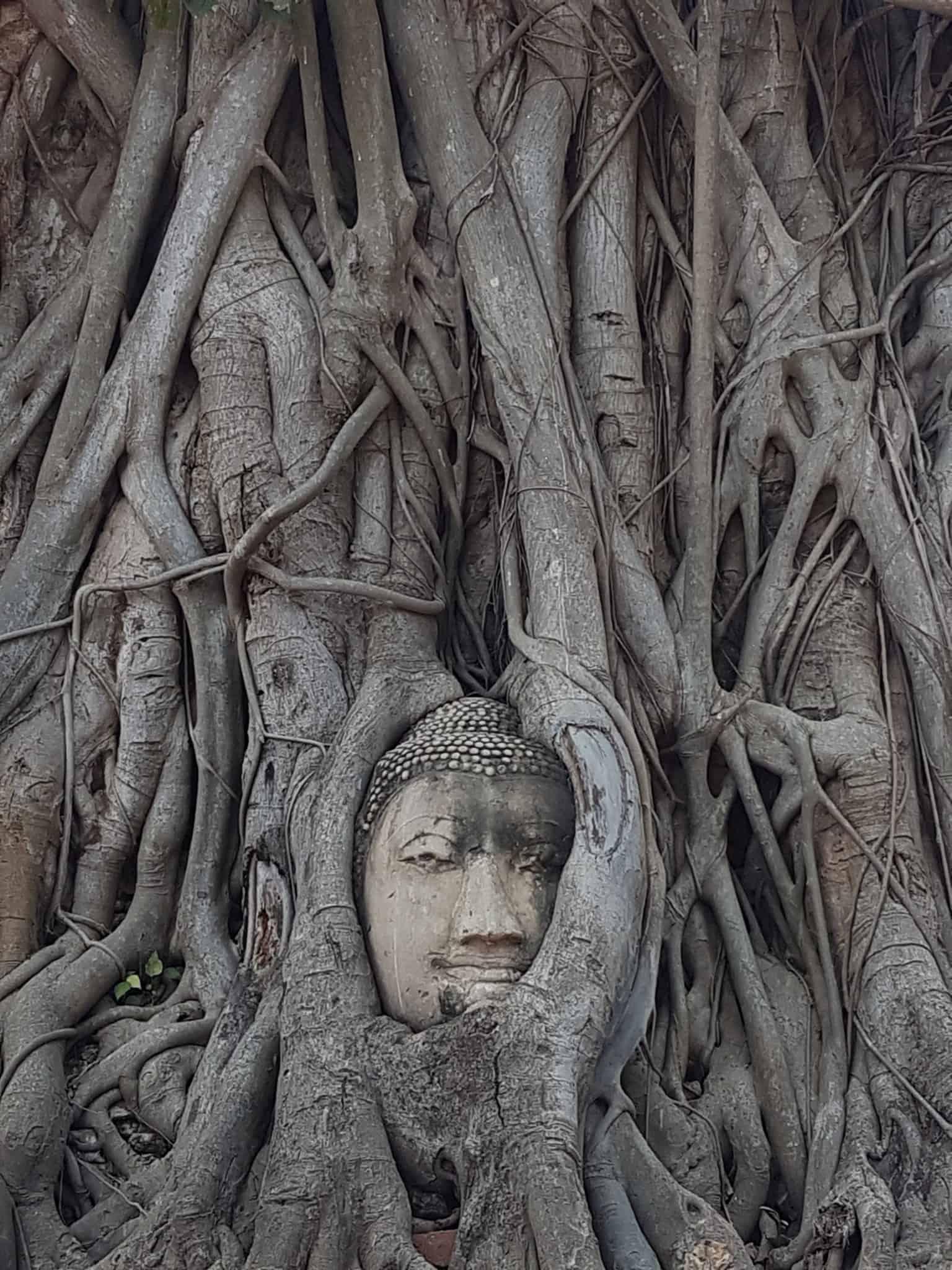 Thaïlande, visite d'Ayutthaya et de ses temples 🌞 10