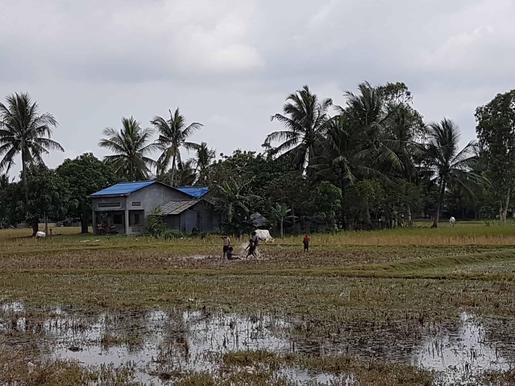 Cambodge, découverte du célèbre poivre de Kampot 🌶 5