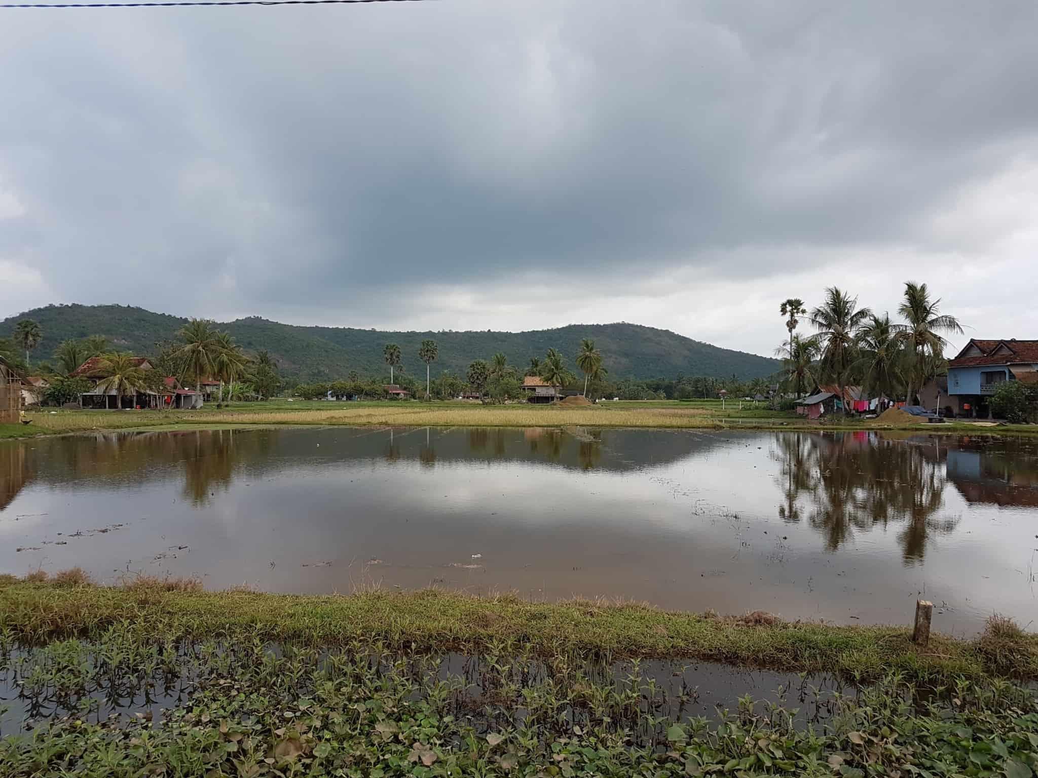 Cambodge, découverte du célèbre poivre de Kampot 🌶 4