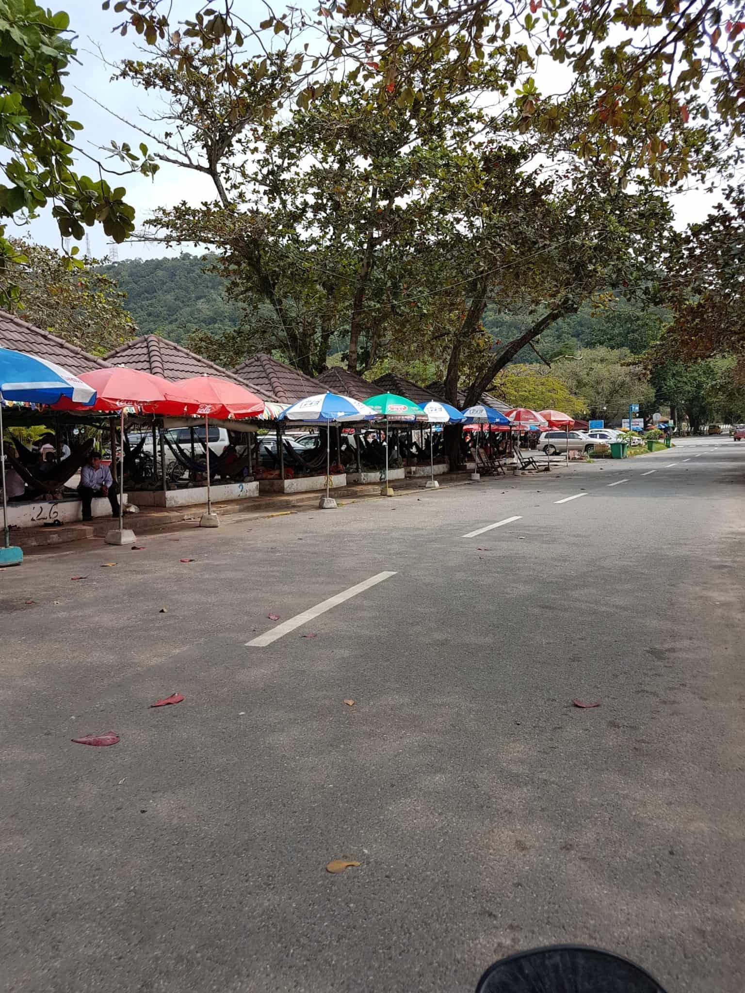 Cambodge, Kep et sa ferme aux papillons 🦋 4