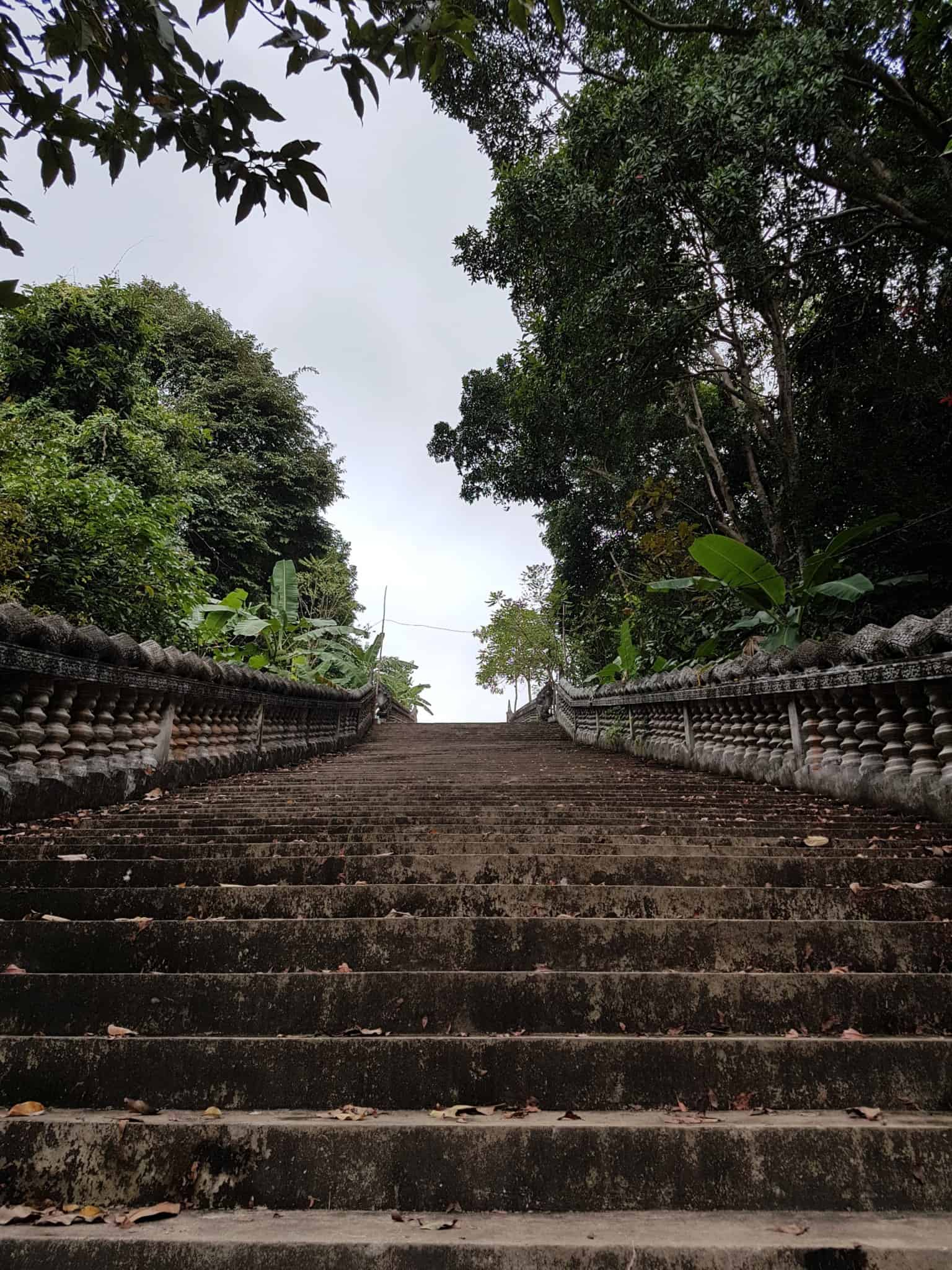 Cambodge, Kep et sa ferme aux papillons 🦋 7