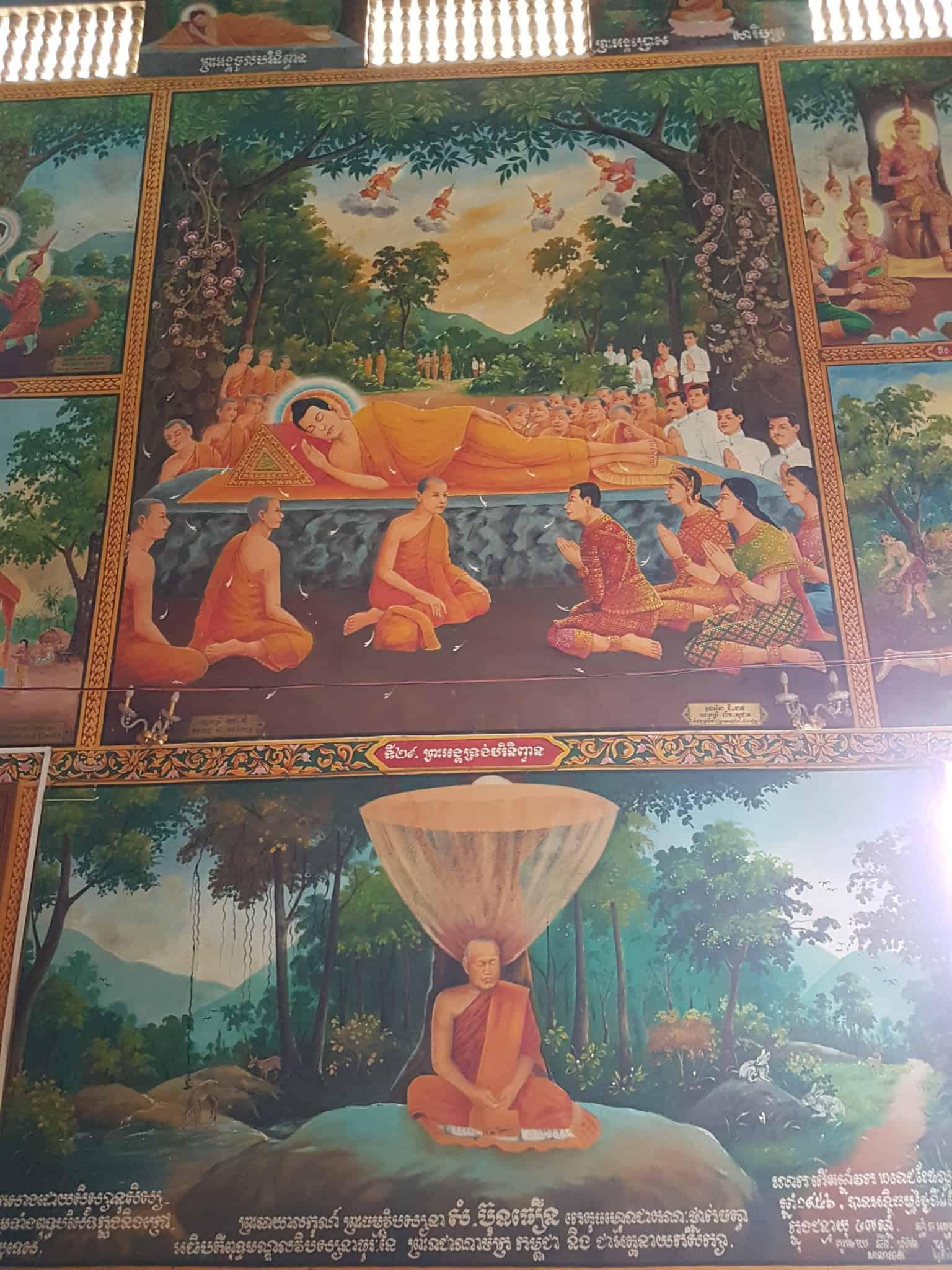 Cambodge, Kep et sa ferme aux papillons 🦋 15