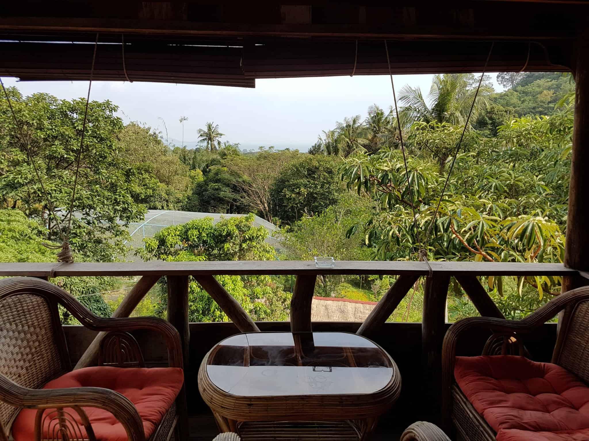 Cambodge, Kep et sa ferme aux papillons 🦋 22