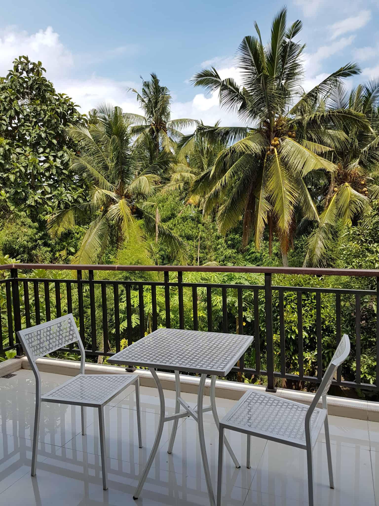Bali, les rizières de Tegallalang et le temple Pura Tirta Empul🌱 3