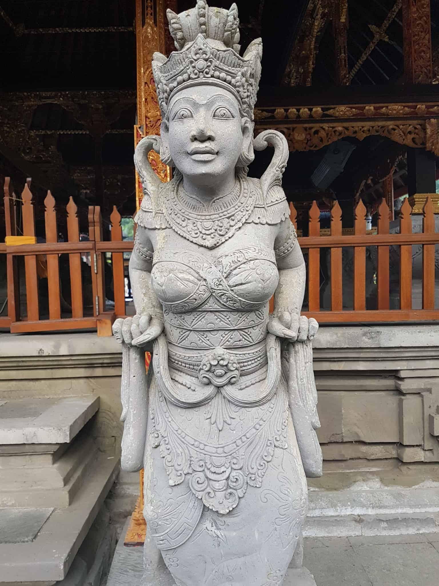 Bali, les rizières de Tegallalang et le temple Pura Tirta Empul🌱 27