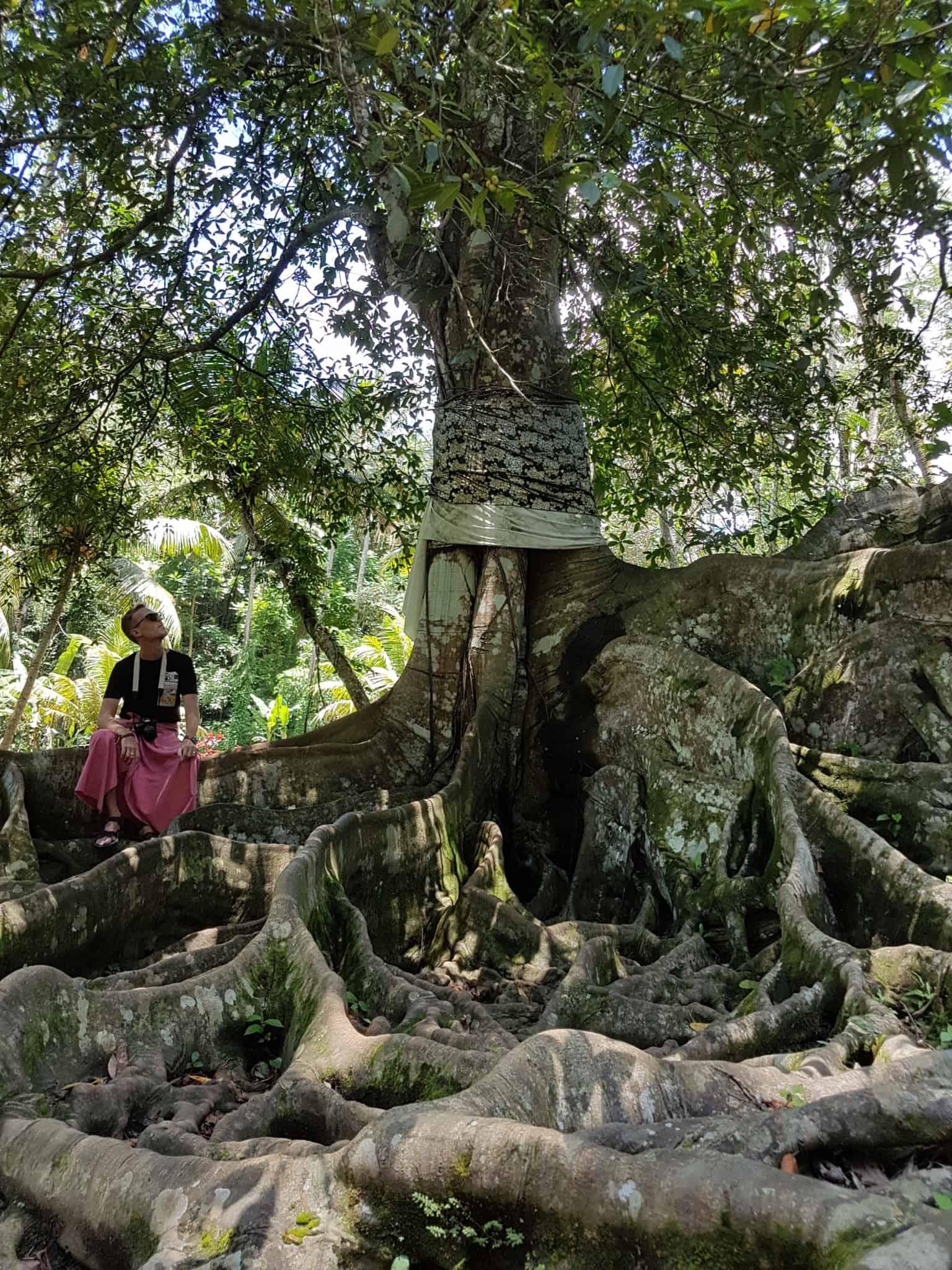 Bali, le joli et atypique temple Goa Gajah 🛕 6