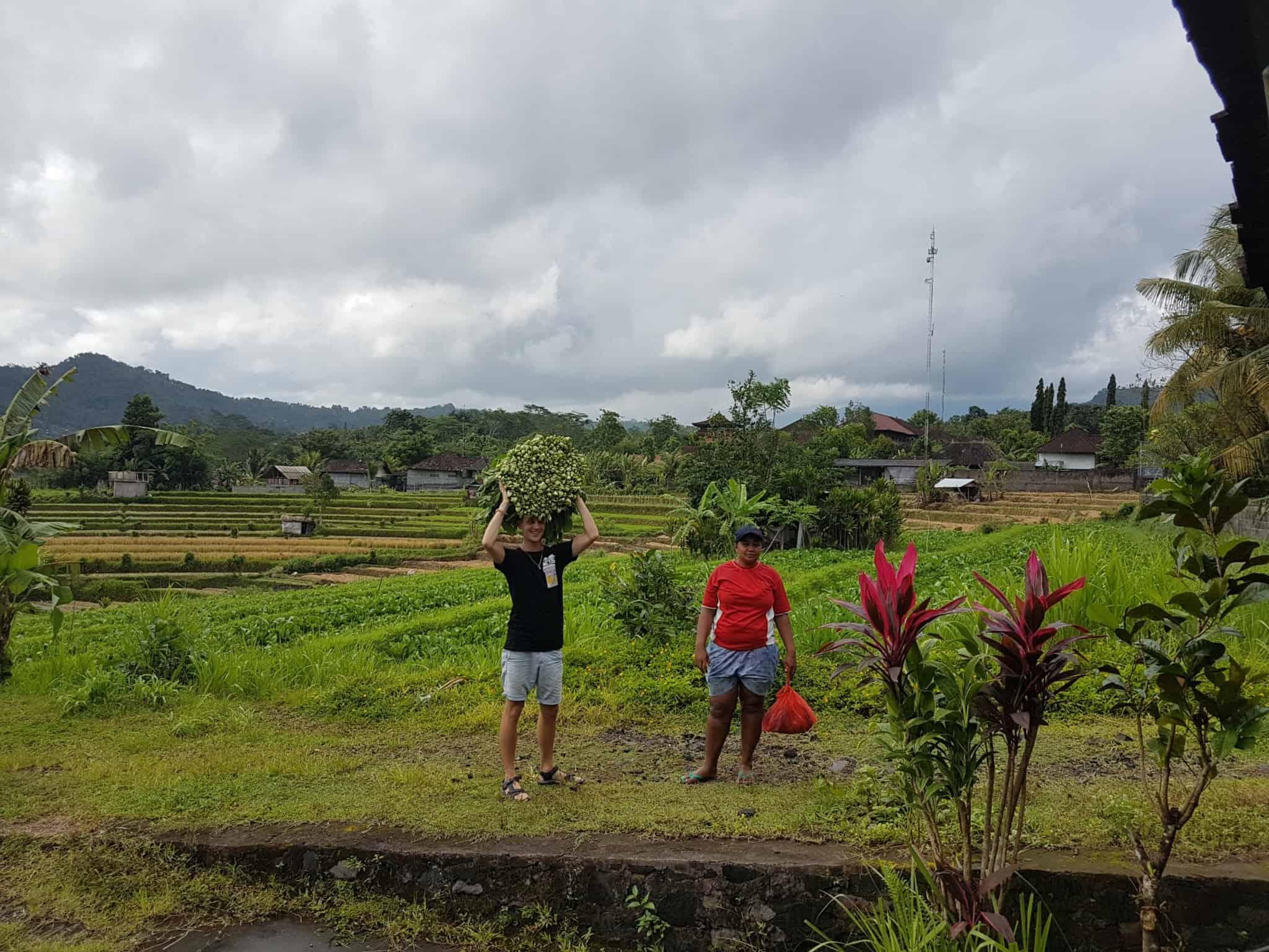 Bali, le joli et atypique temple Goa Gajah 🛕 14