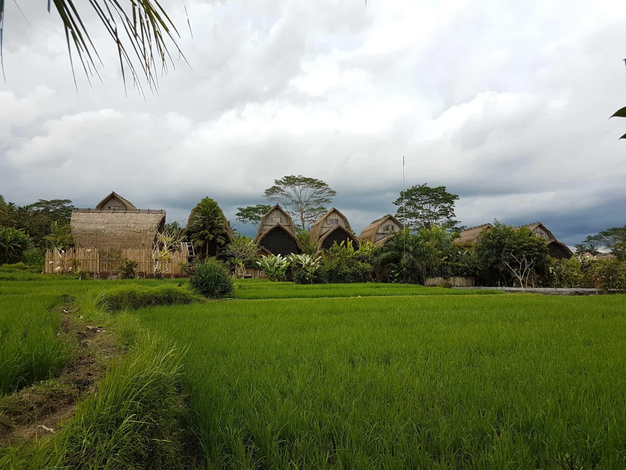 Bali, roadtrip en scooter direction le lac Danau Batur 💧 16