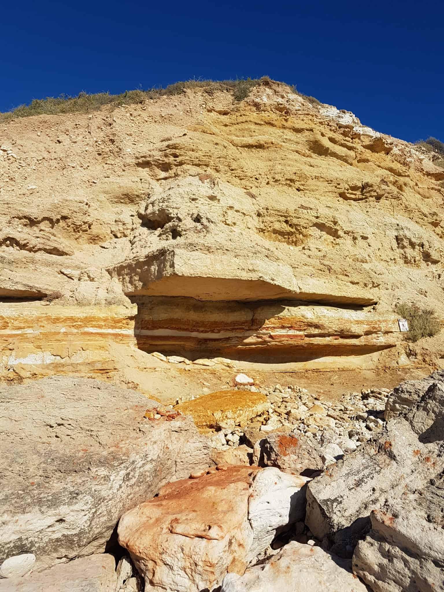 Australie, dégustation de vin et découverte de la réserve Towilla Yerta 🌅 11