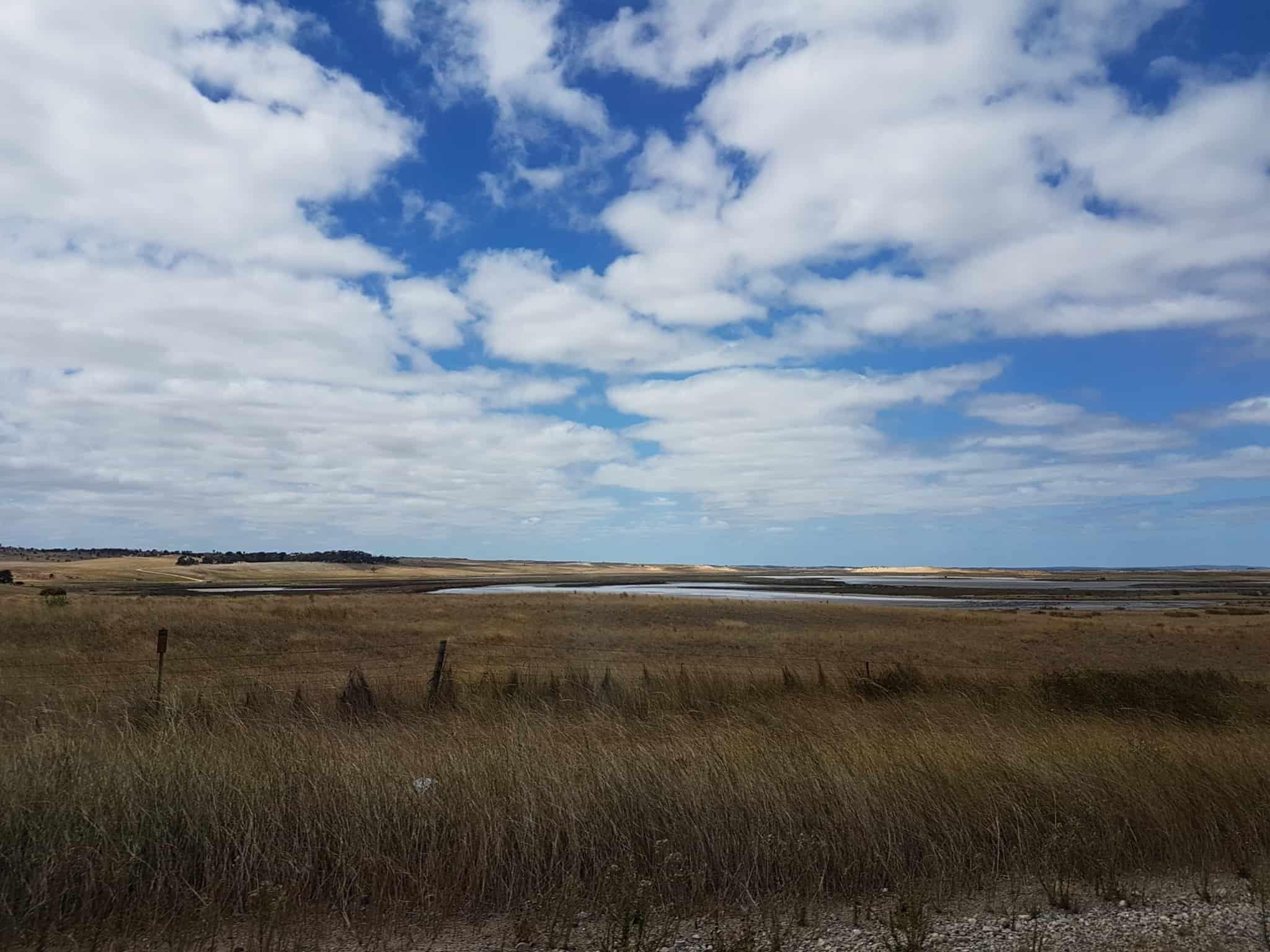 Australie, on loue une voiture pour faire la Great Ocean Road 🚗 6