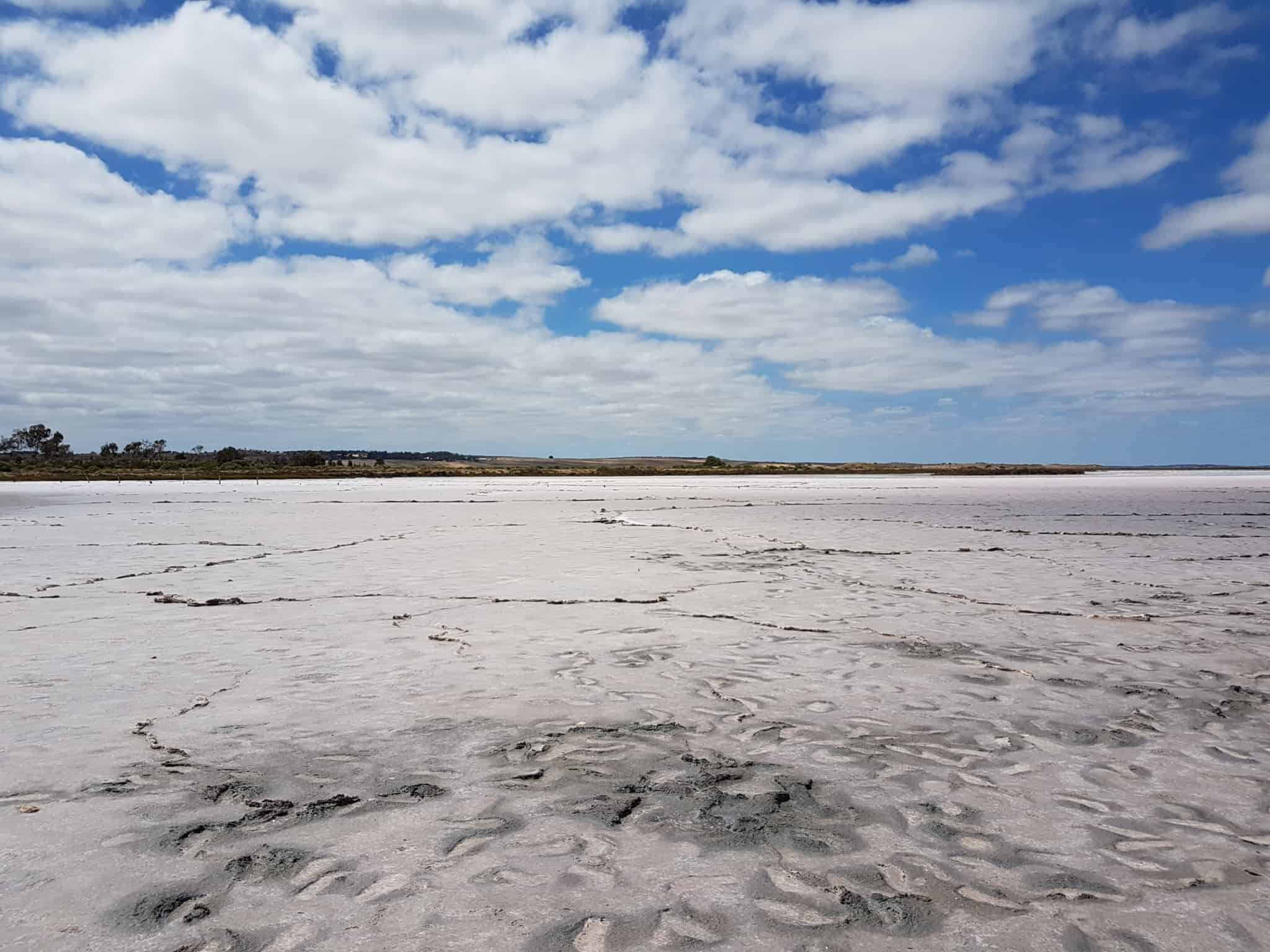 Australie, on loue une voiture pour faire la Great Ocean Road 🚗 9