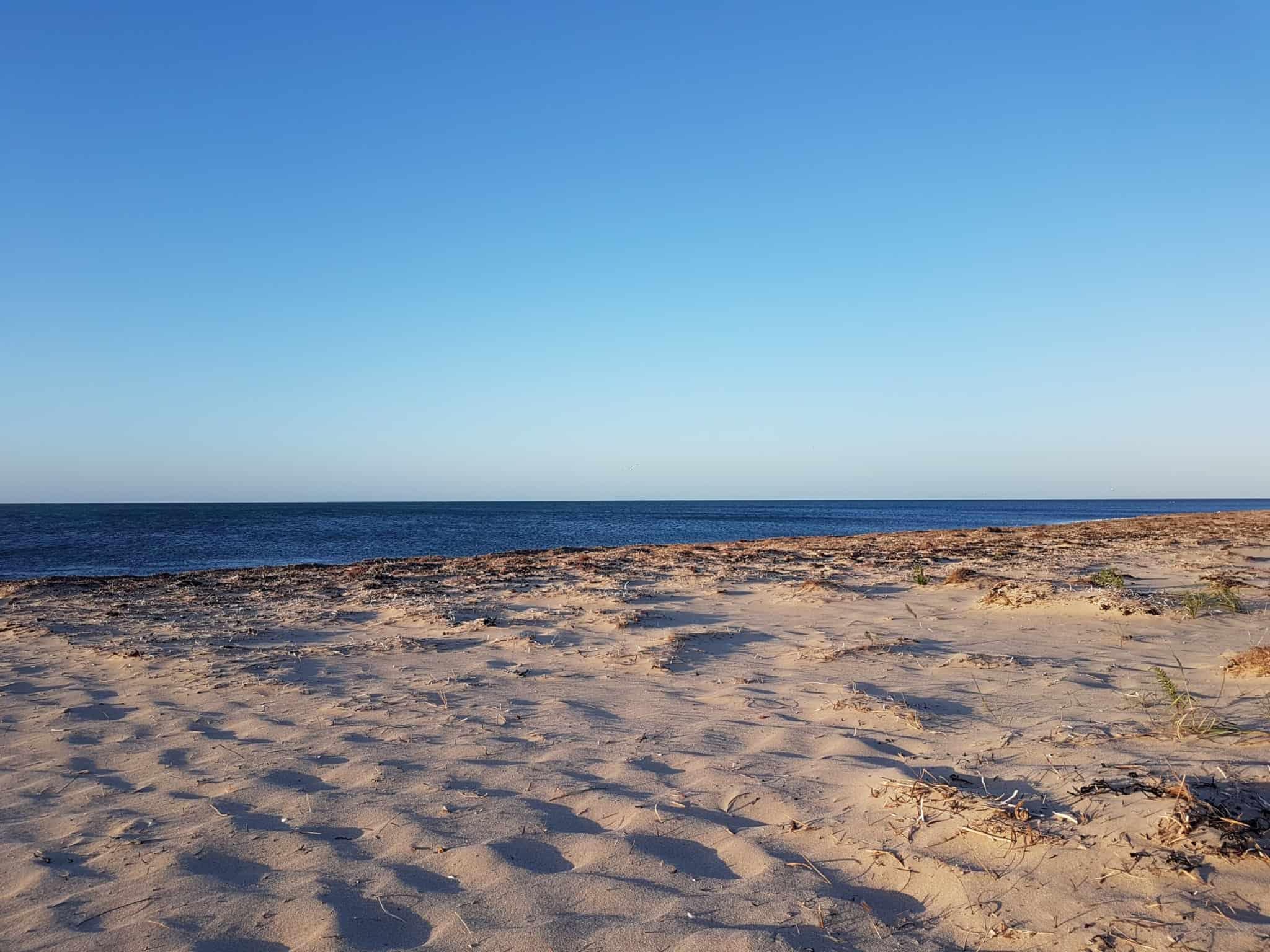 Australie, on loue une voiture pour faire la Great Ocean Road 🚗 18