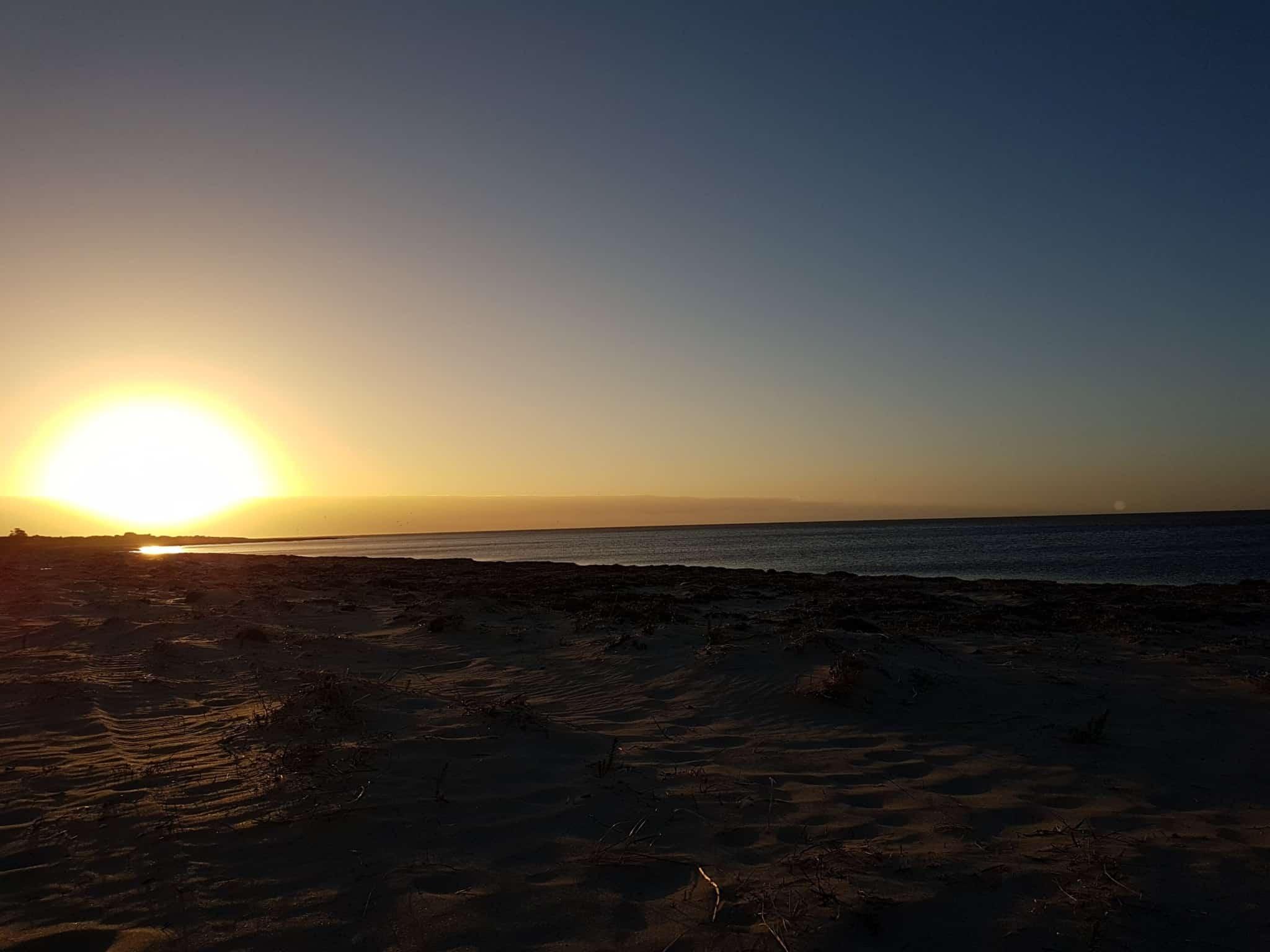 Australie, on loue une voiture pour faire la Great Ocean Road 🚗 20