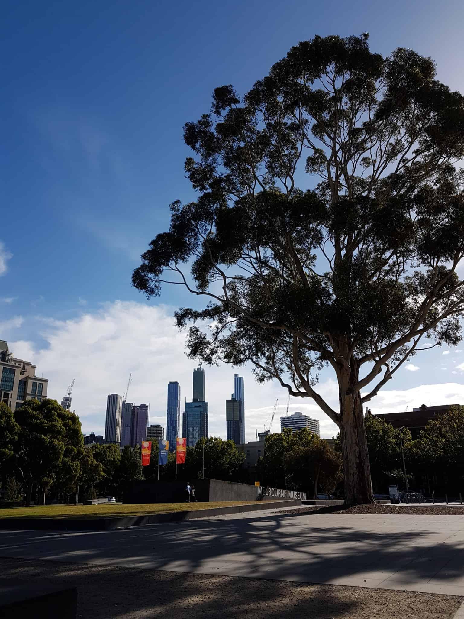 Australie, trois jours à découvrir Melbourne 👣 8