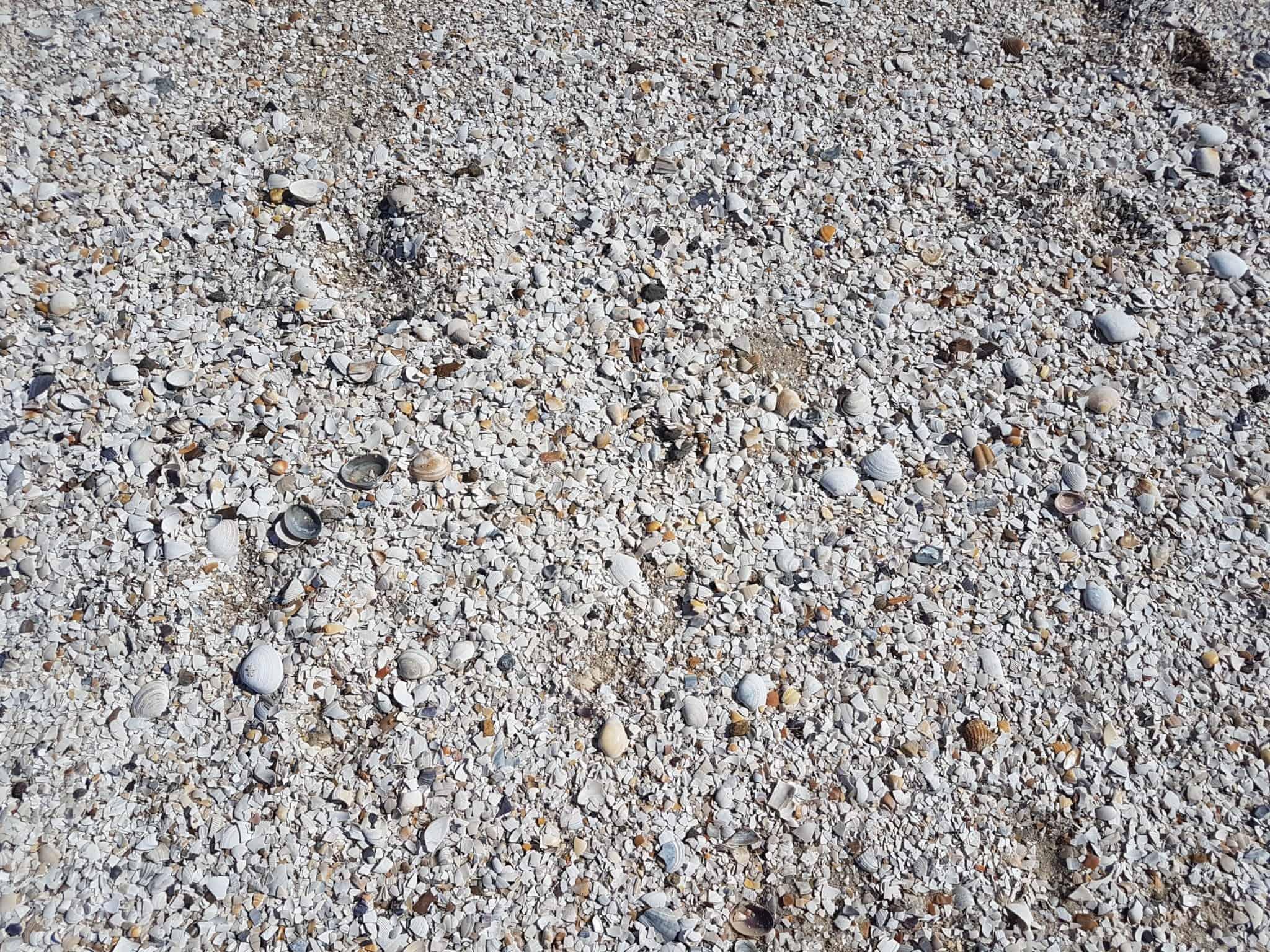"""Australie, la plage de St Kilda ou la """"traversée du désert"""" 👳 22"""