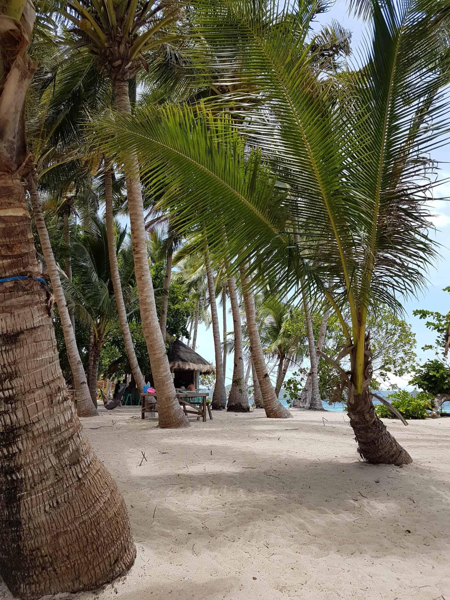 Philippines, comment je me suis retrouvée seule sur une île déserte 🧜♀️ 23
