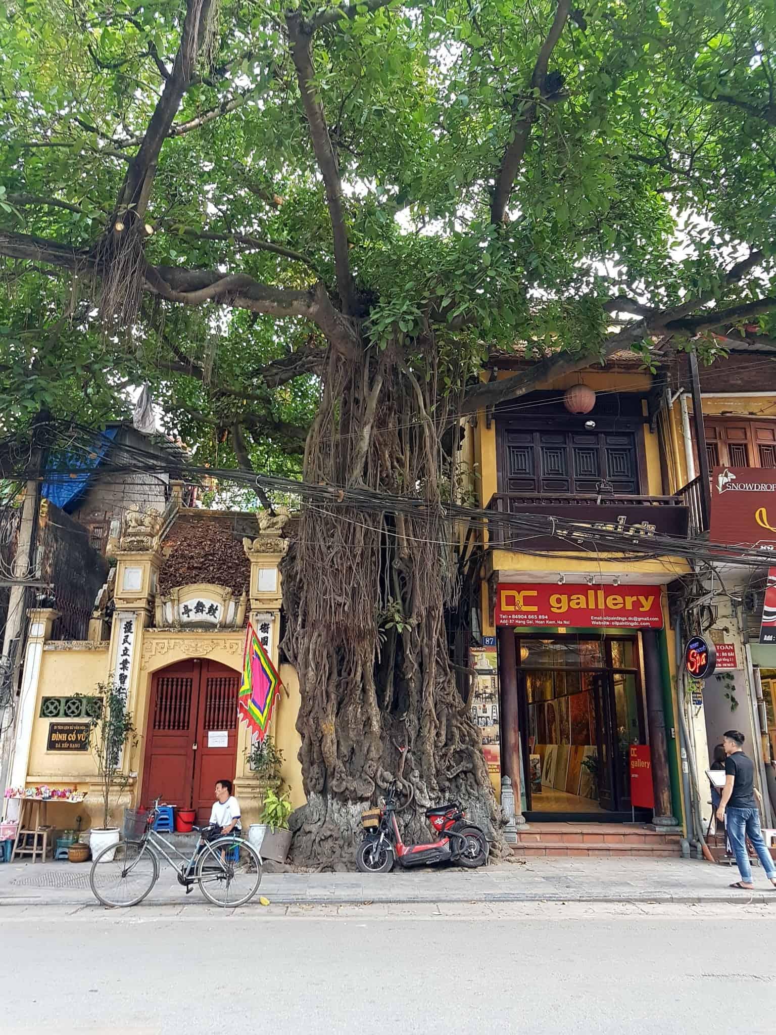 Vietnam, on tombe sous le charme de Hanoï 😊 9