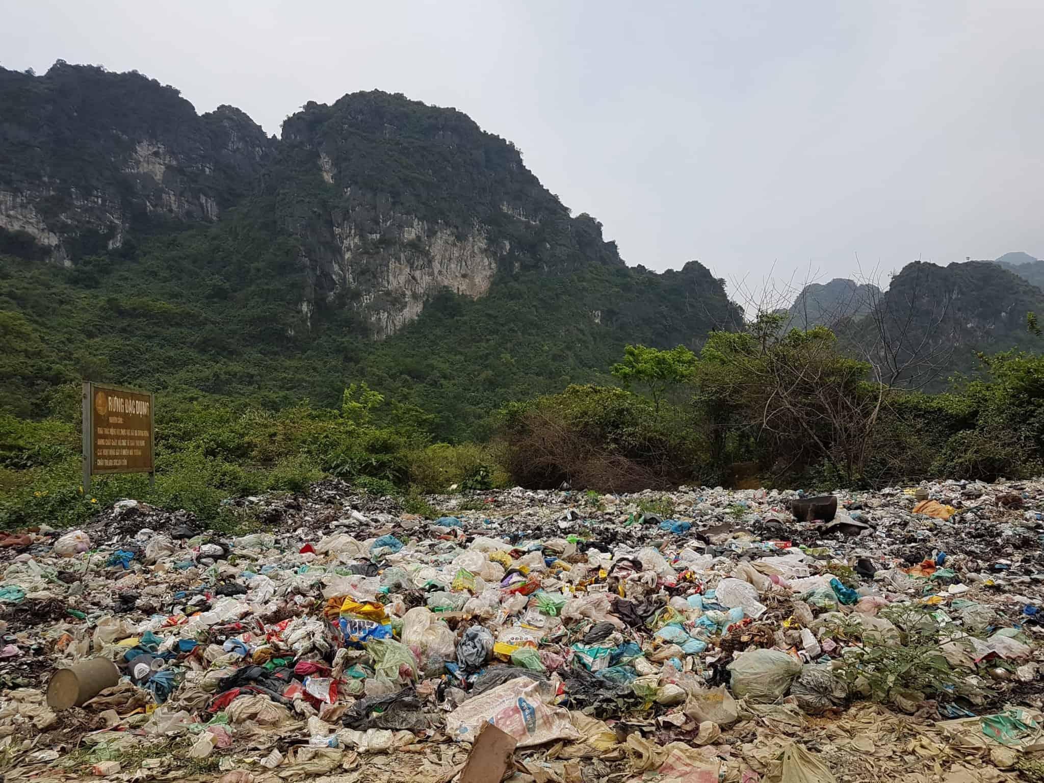 Vietnam, la magnifique réserve naturelle de Vân Long 🌾 7