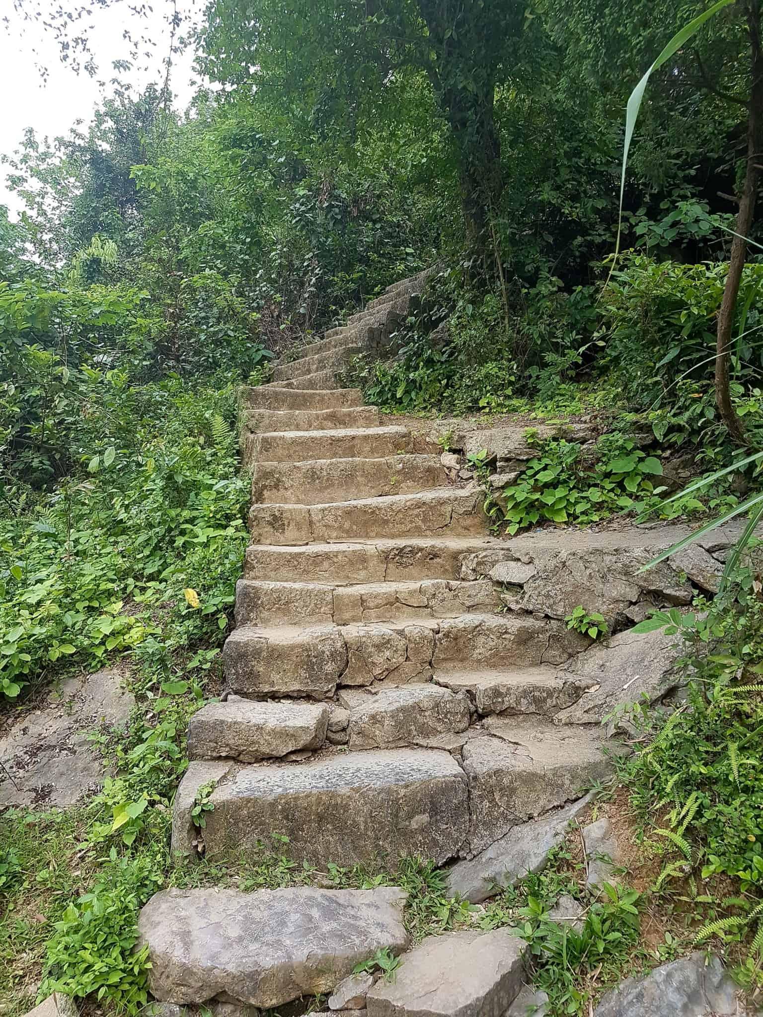 Vietnam, la magnifique réserve naturelle de Vân Long 🌾 28