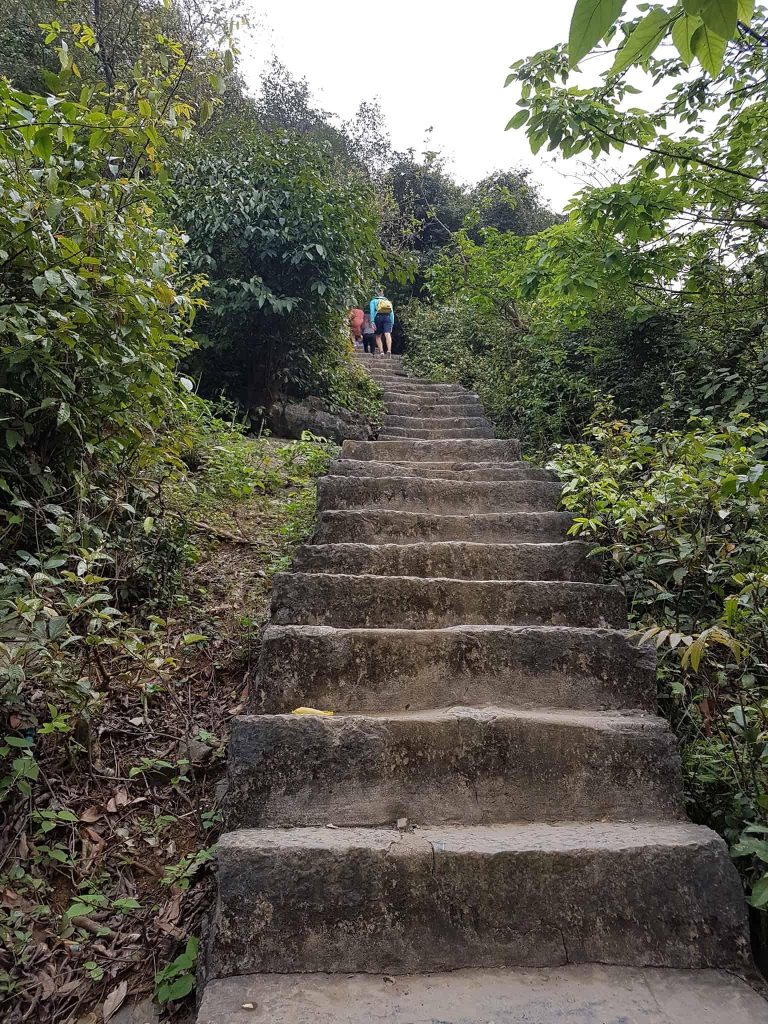 Vietnam, la magnifique réserve naturelle de Vân Long 🌾 29