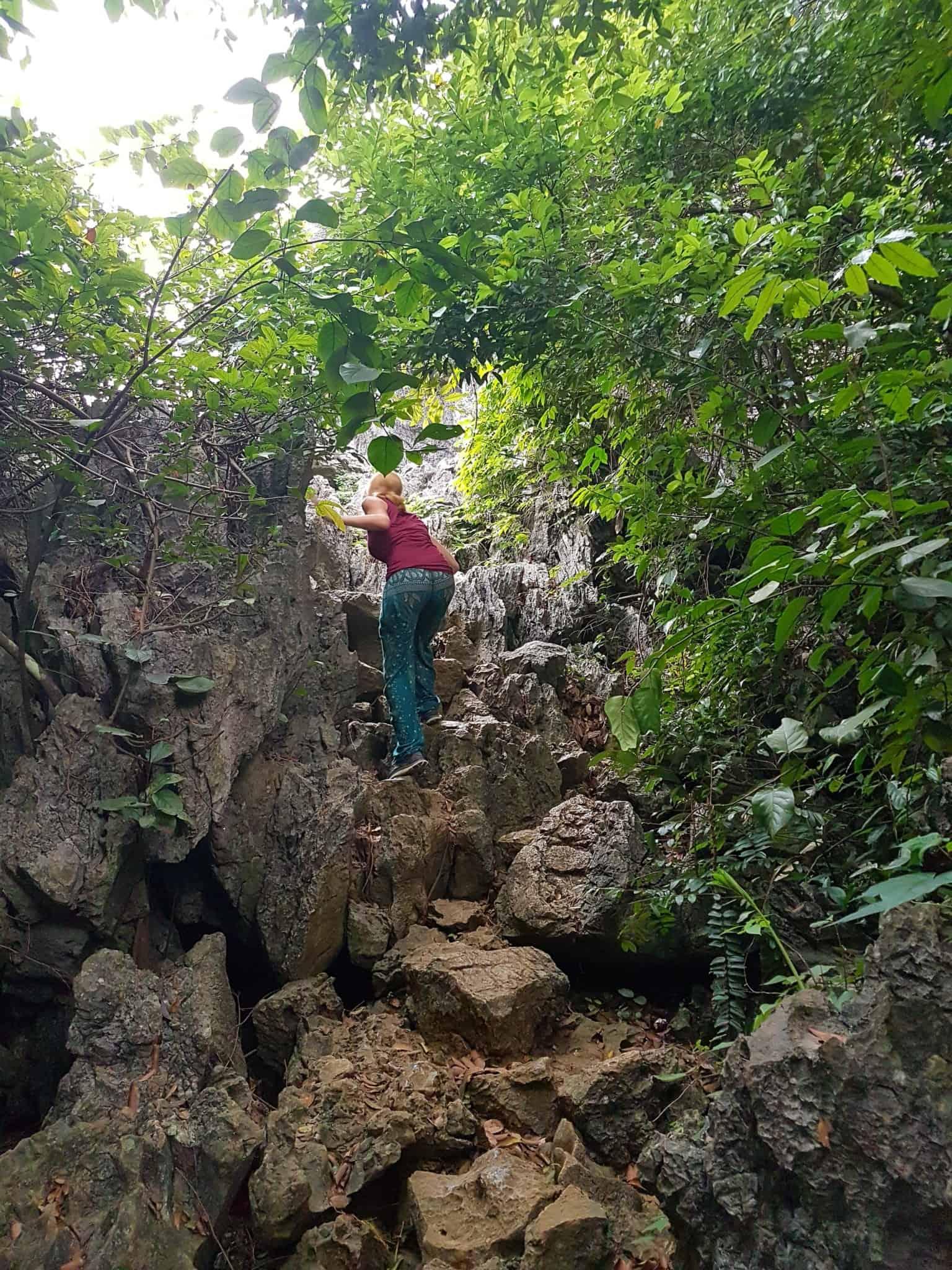 Vietnam, la magnifique réserve naturelle de Vân Long 🌾 33