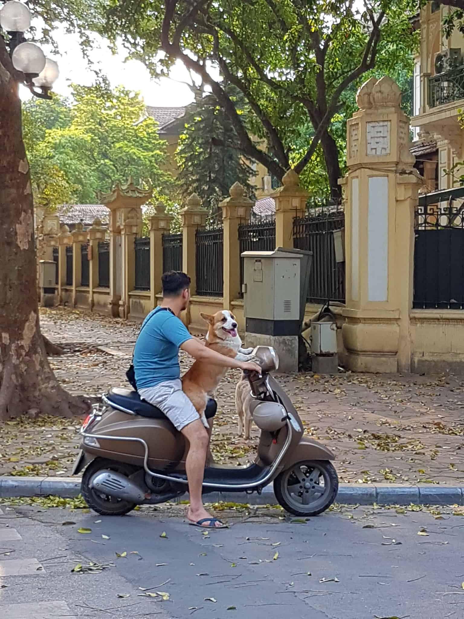 Vietnam, trois jours à découvrir Hanoï 👟 5