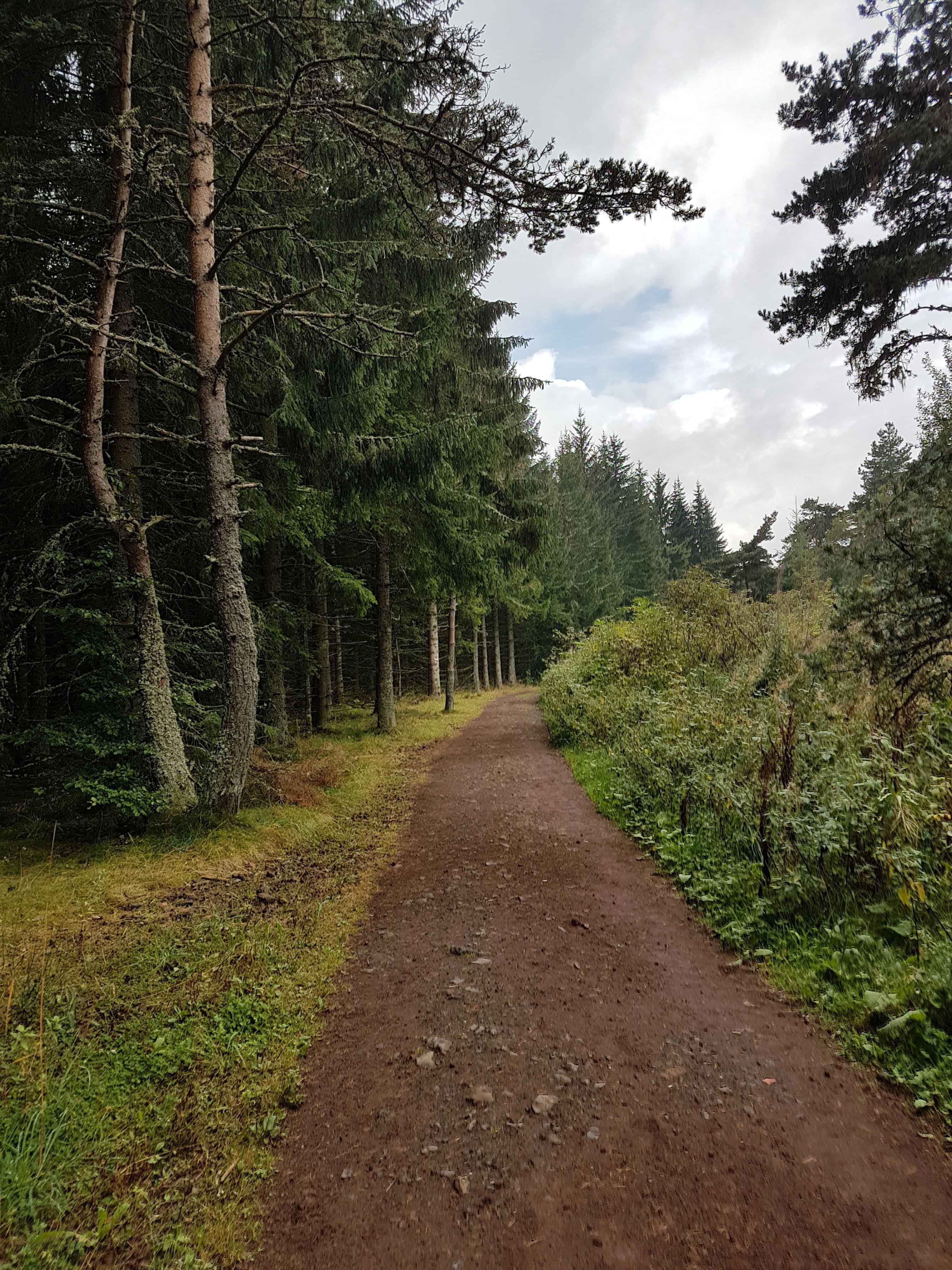 Chemin de Compostelle, poursuivi par la pluie jusqu'à Saint-Privat-d'Allier 🌧 6