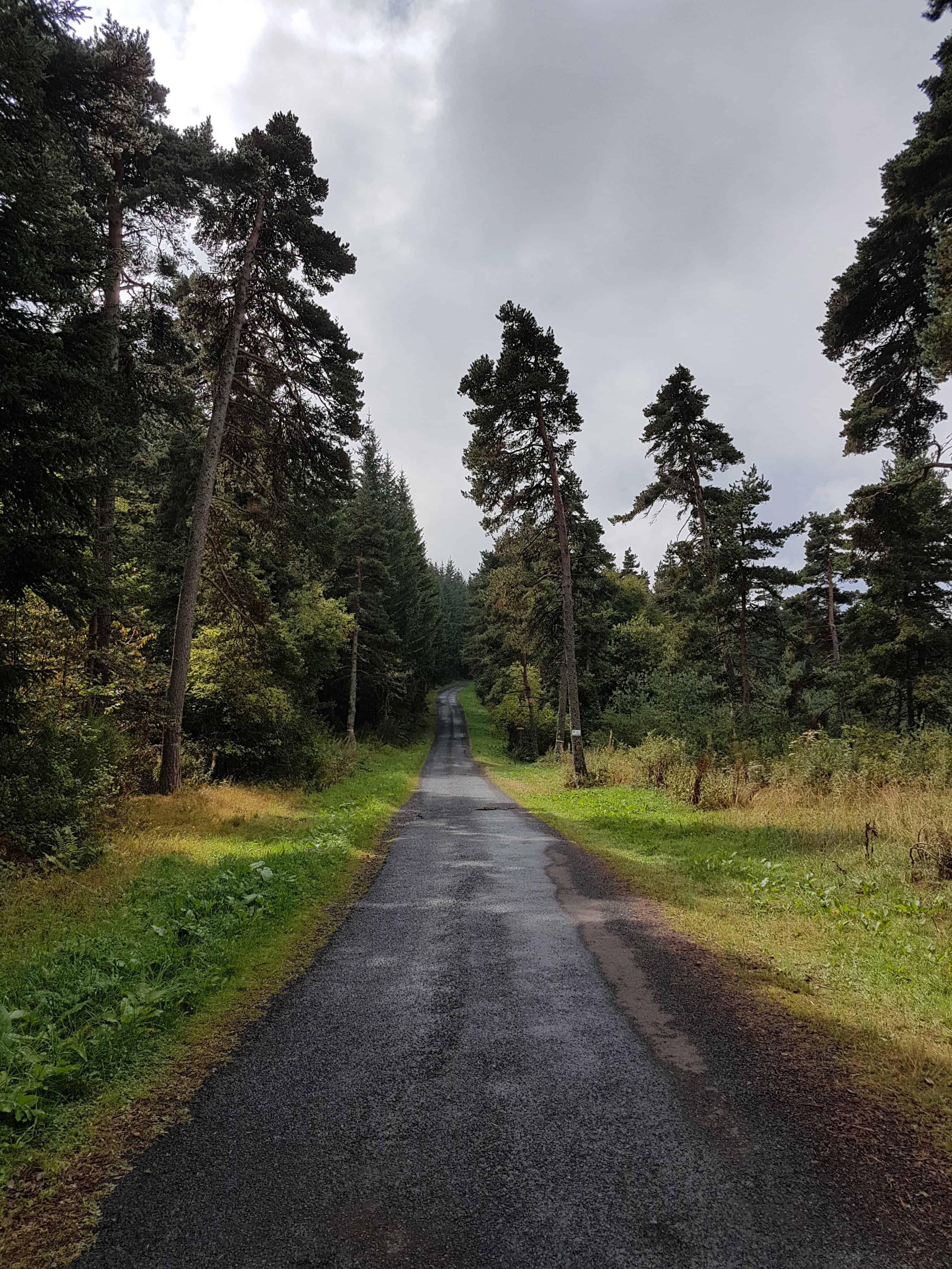 Chemin de Compostelle, poursuivi par la pluie jusqu'à Saint-Privat-d'Allier 🌧 7