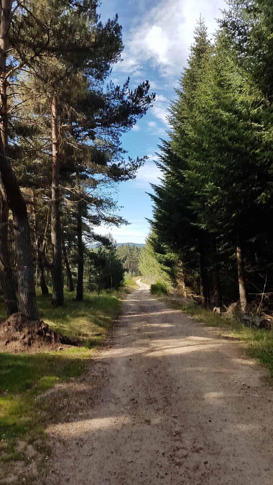 Chemin de Compostelle, arrivée à Chanaleilles avec les jambes lourdes 🦶 6