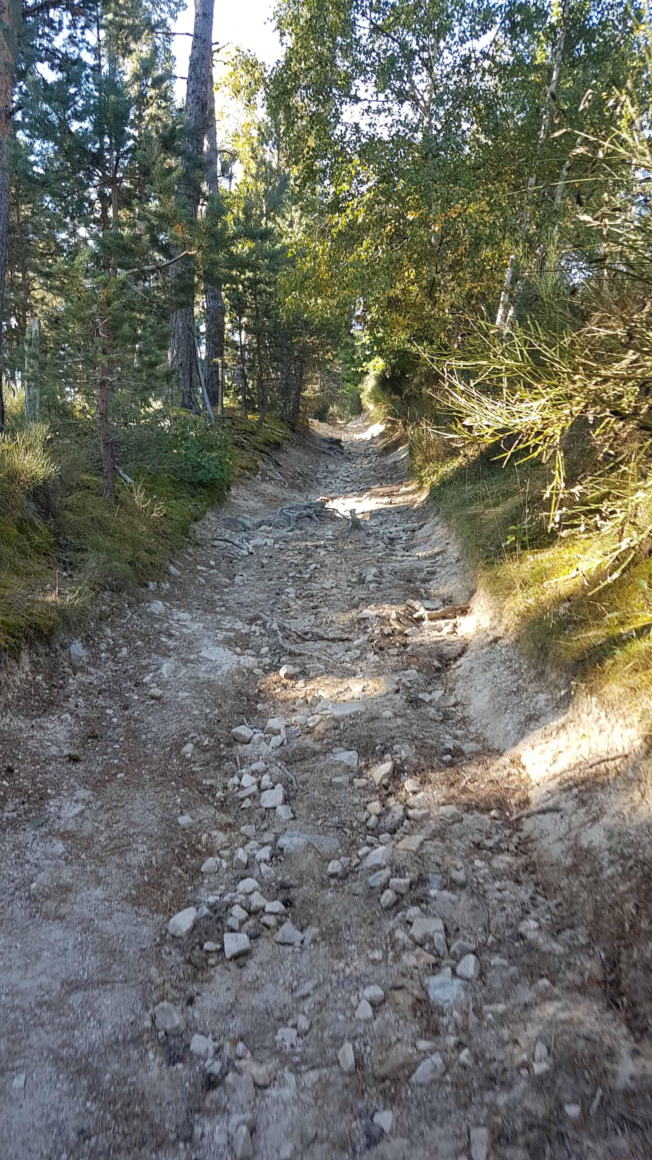Chemin de Compostelle, on goûte pour la première fois l'aligot à Aumont-Aubrac 🥘 4