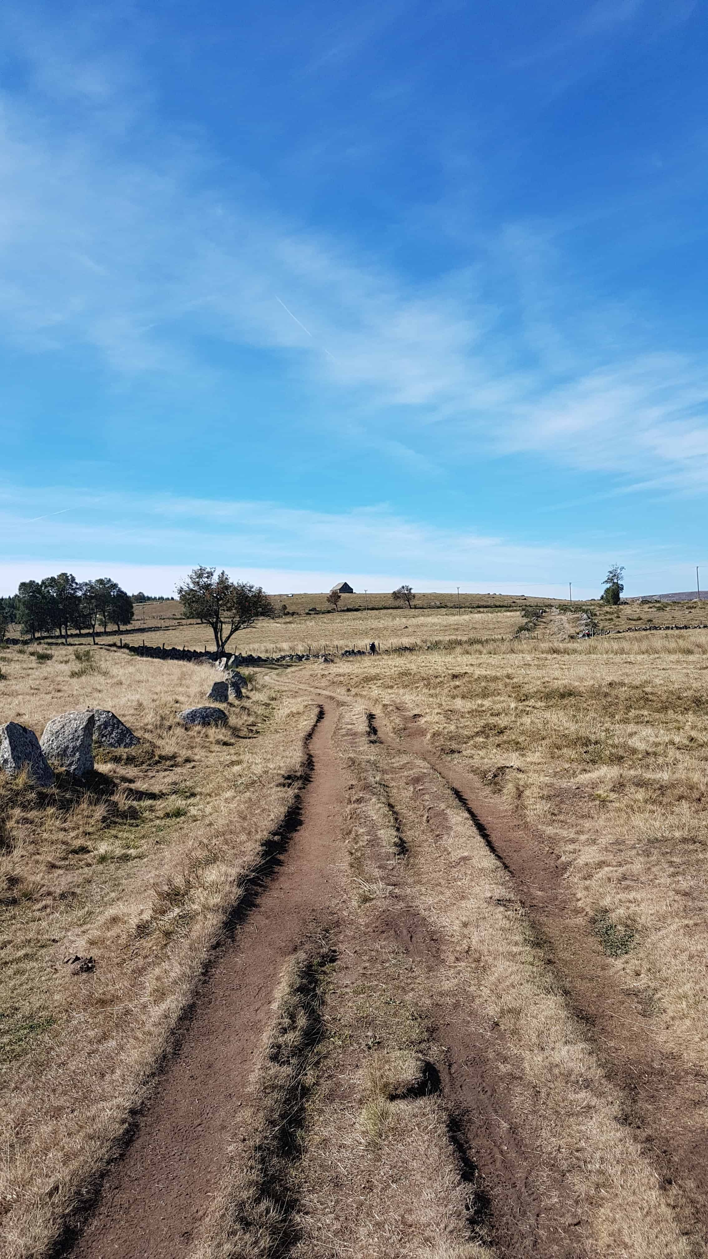 Chemin de Compostelle, une reprise tout en douceur vers les Gentianes 🤗 8