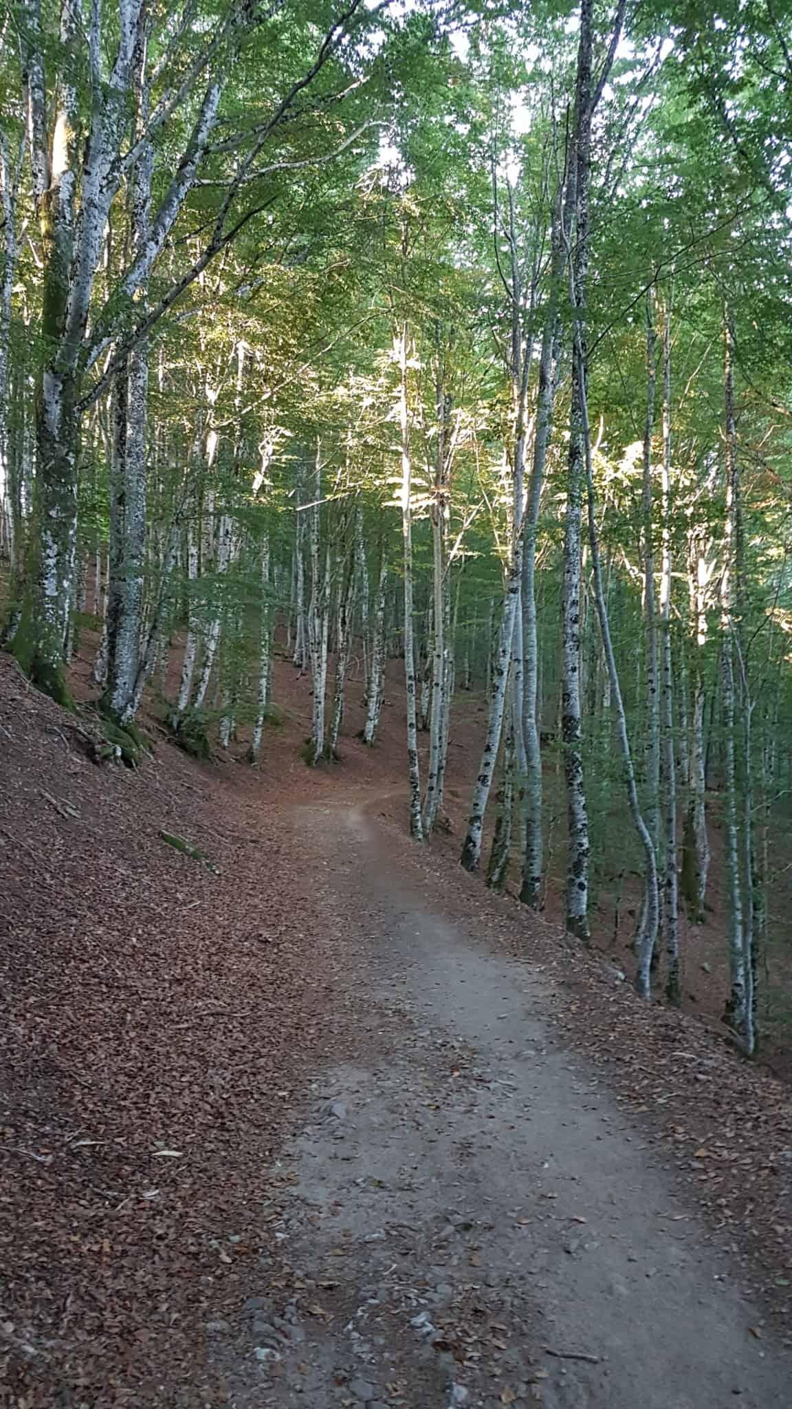 Chemin de Compostelle, on dort dans le couvent de Saint Côme-d'Olt ⛪ 27
