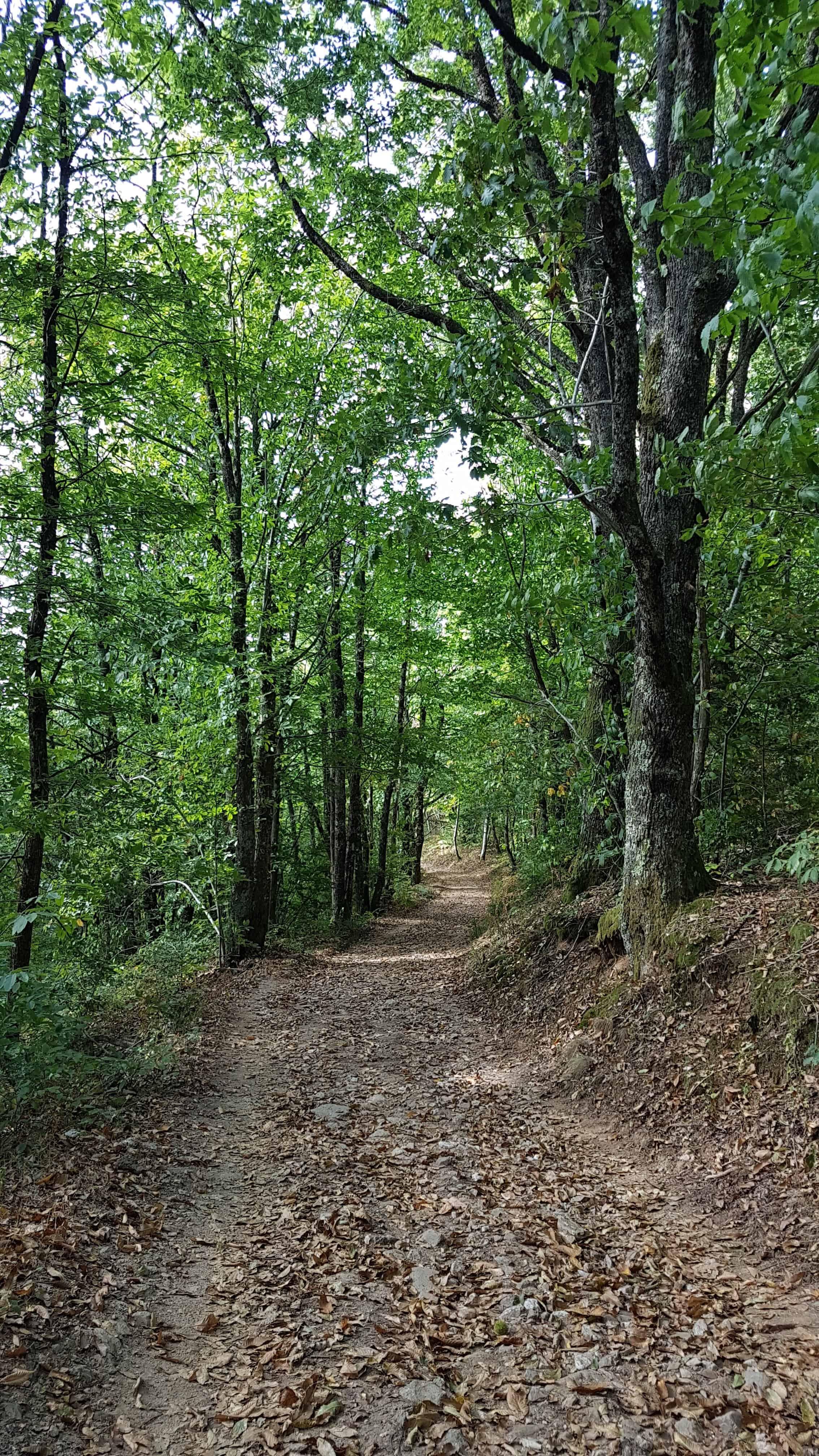 Chemin de Compostelle, on dort dans le couvent de Saint Côme-d'Olt ⛪ 34