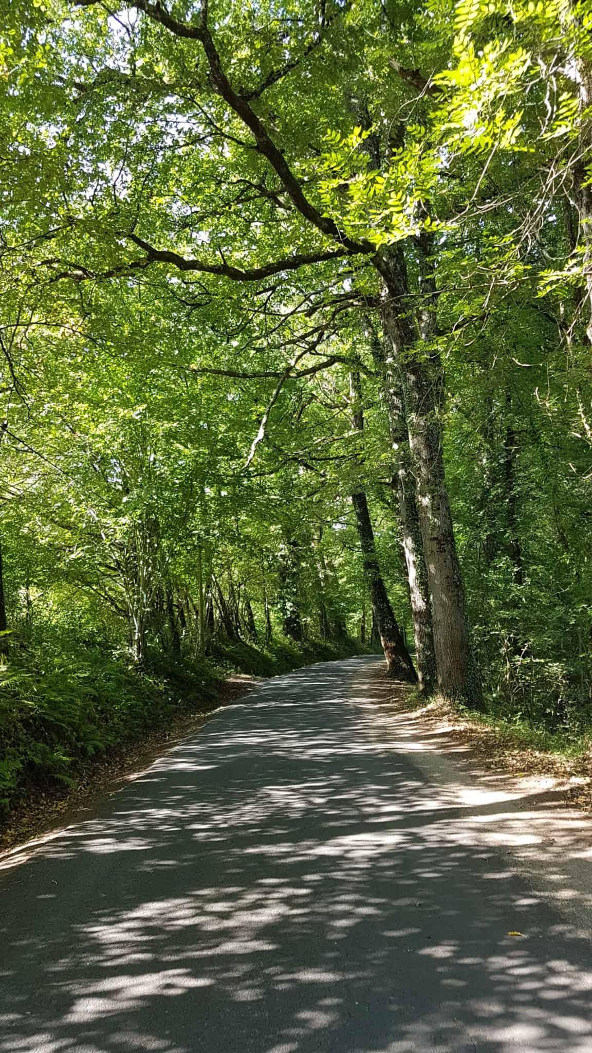 Chemin de Compostelle, une arrivée en beauté à Espalion 🏰 9