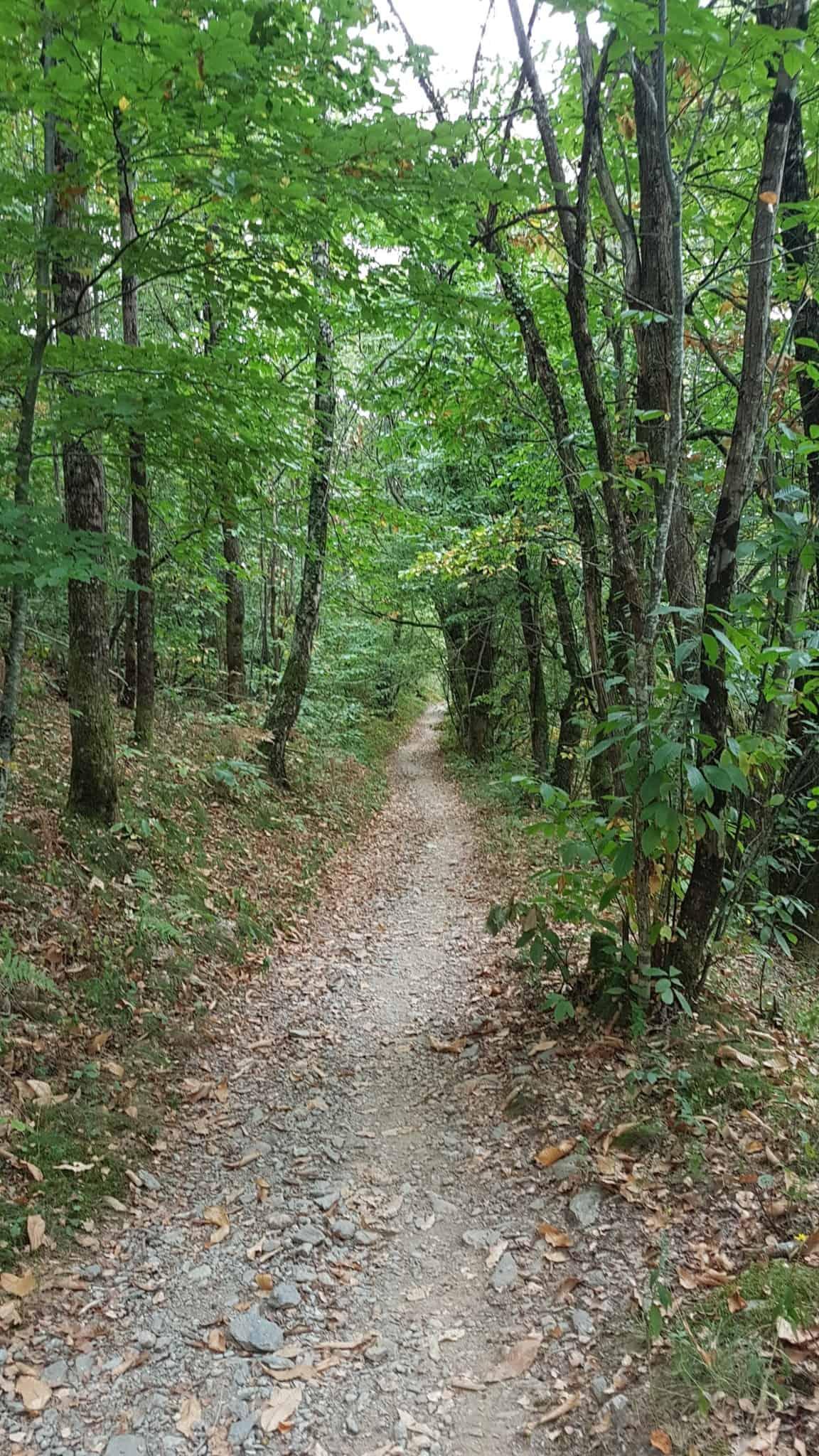 Chemin de Compostelle, on visite le charmant village d'Estaing 🌺 23