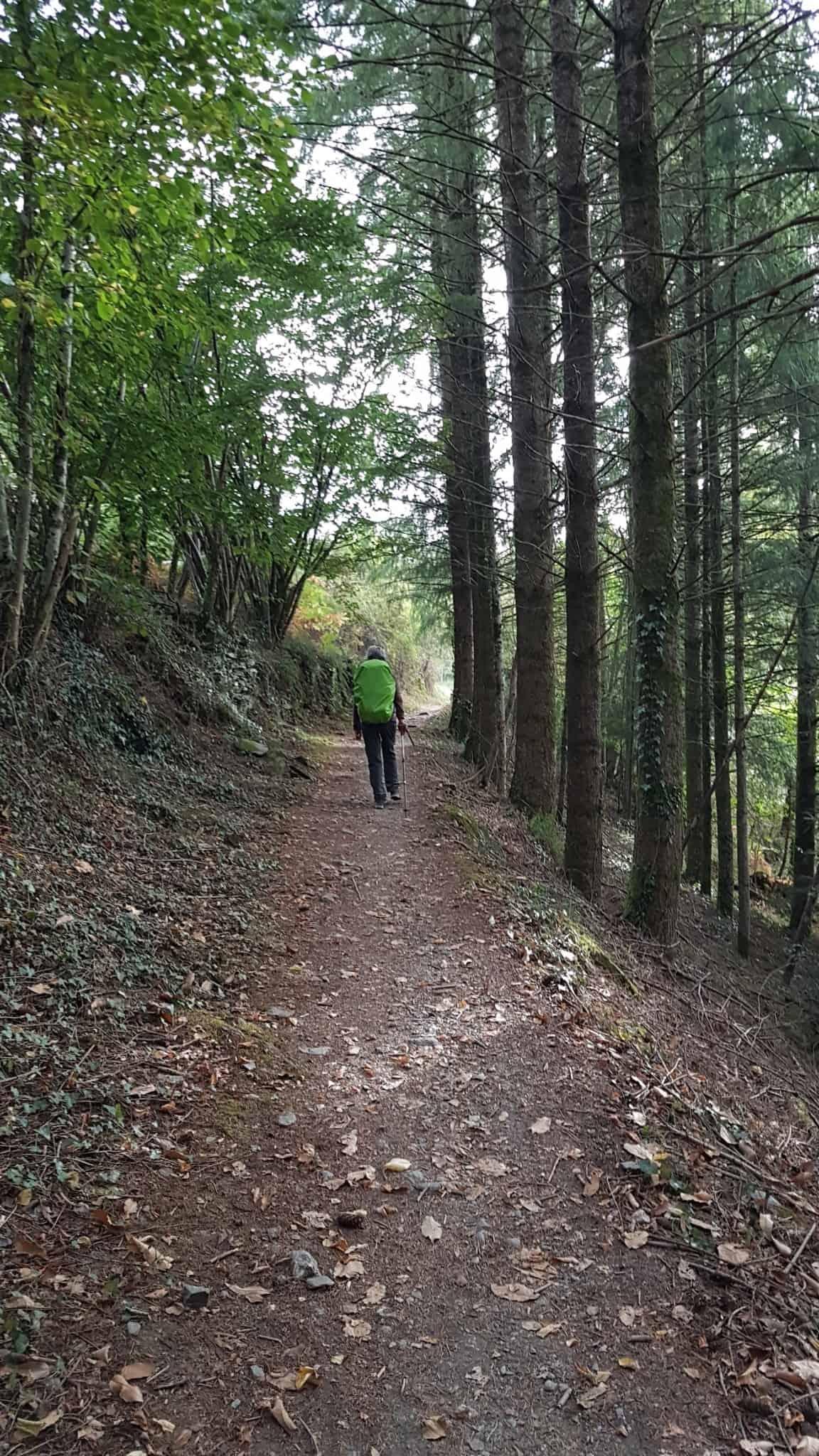 Chemin de Compostelle, arrivées à Massip nous avons droit à notre petit bonheur du quotidien 🎁 5