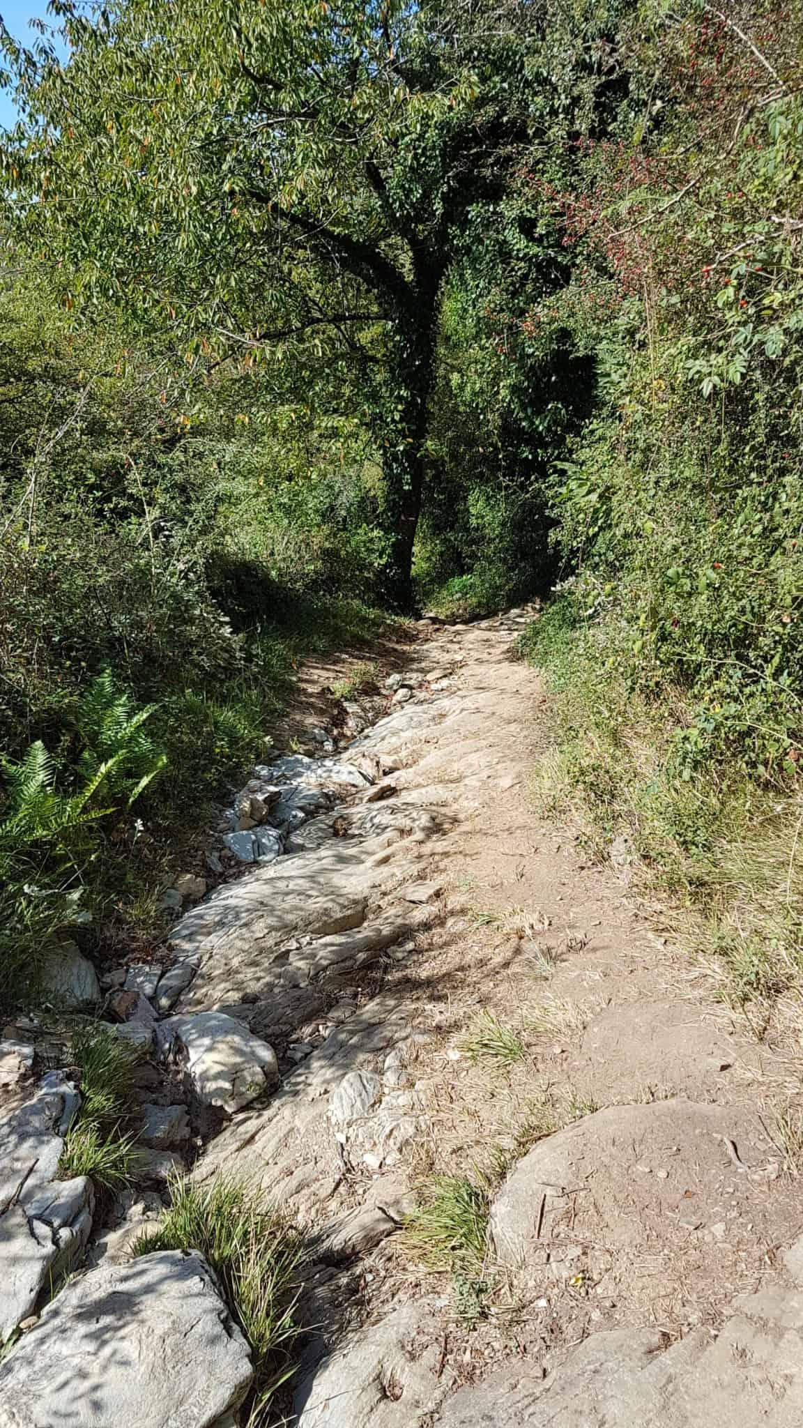 Chemin de Compostelle, nous arrivons à Conques après 204 km parcourus 😁 13