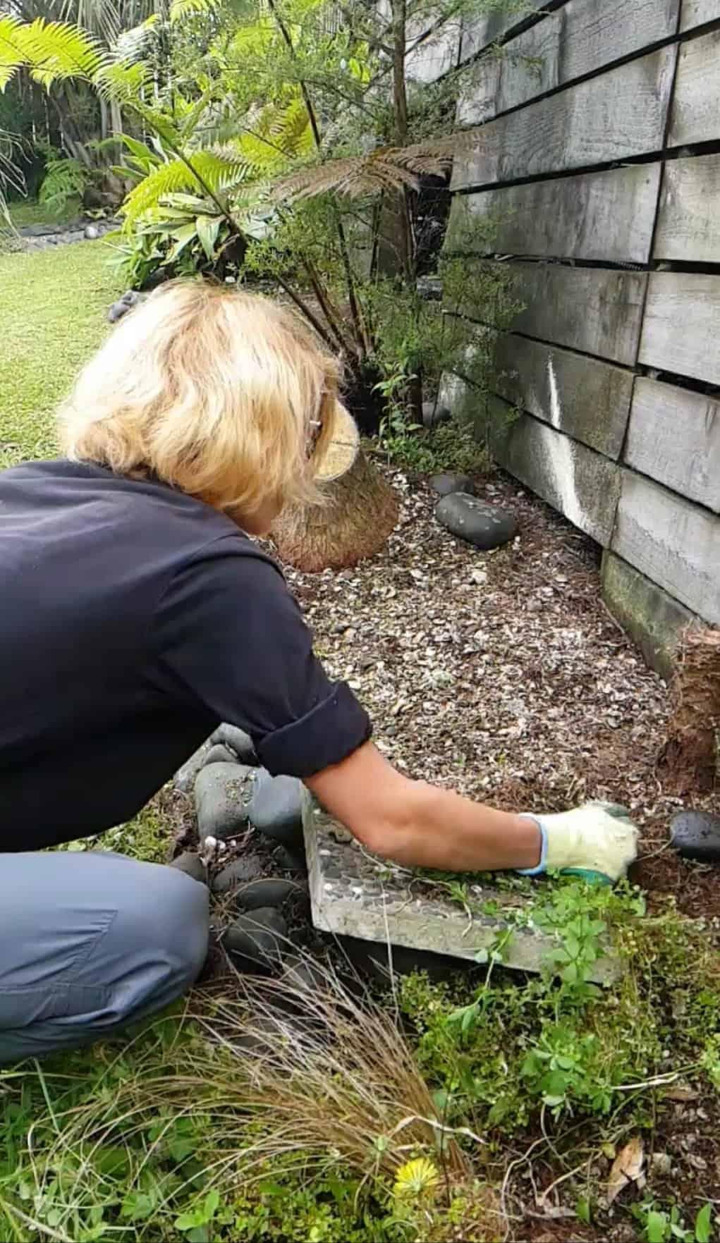 Nouvelle-Zélande, une semaine de HelpX chez Angela la gourou 🧙♀️ 1