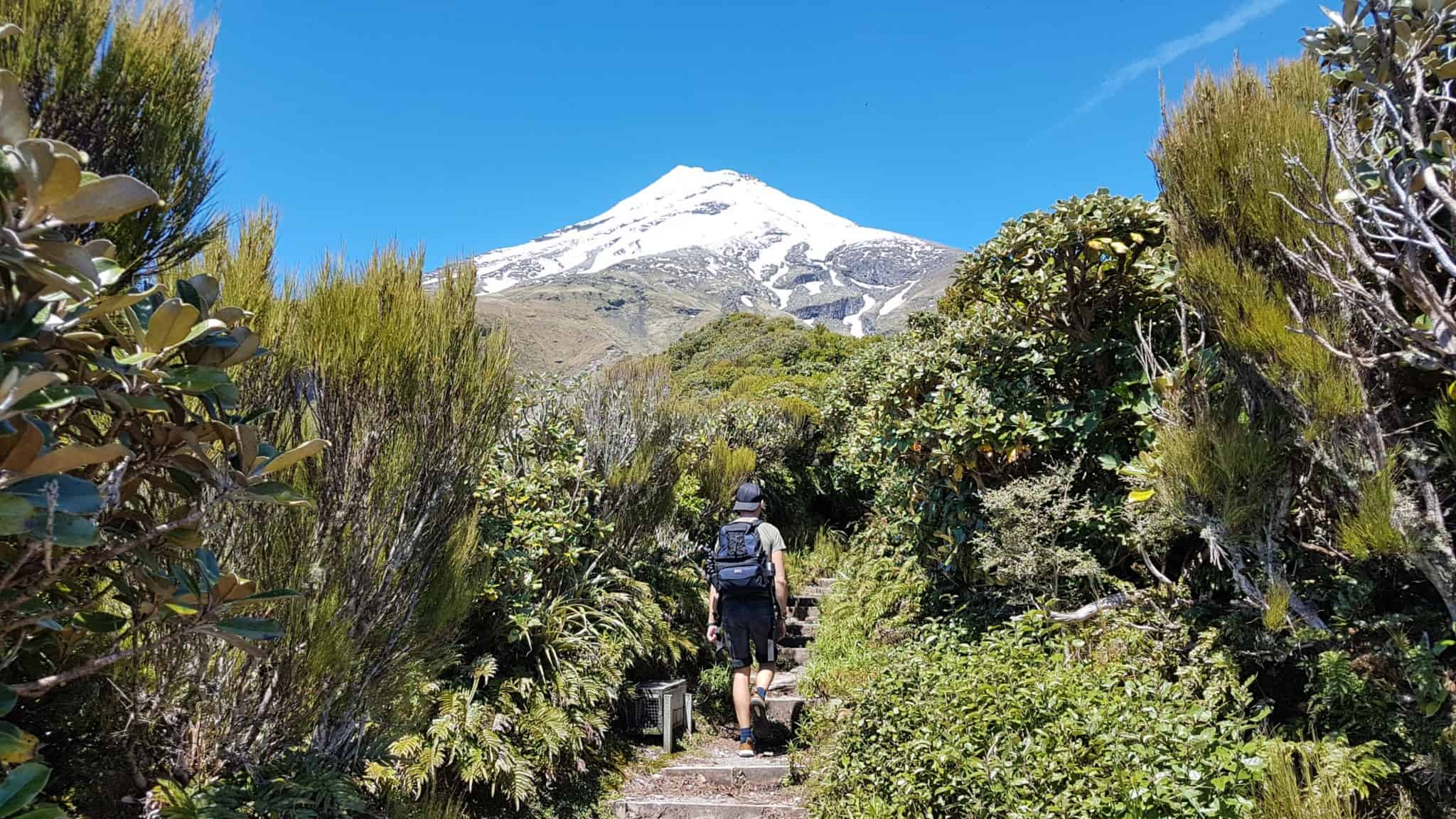 Nouvelle-Zélande, rando Holly Hut Track avec vue sur le Mont Taranaki ❤ 4
