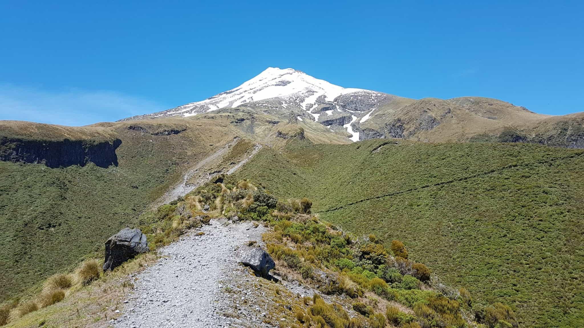 Nouvelle-Zélande, rando Holly Hut Track avec vue sur le Mont Taranaki ❤ 9